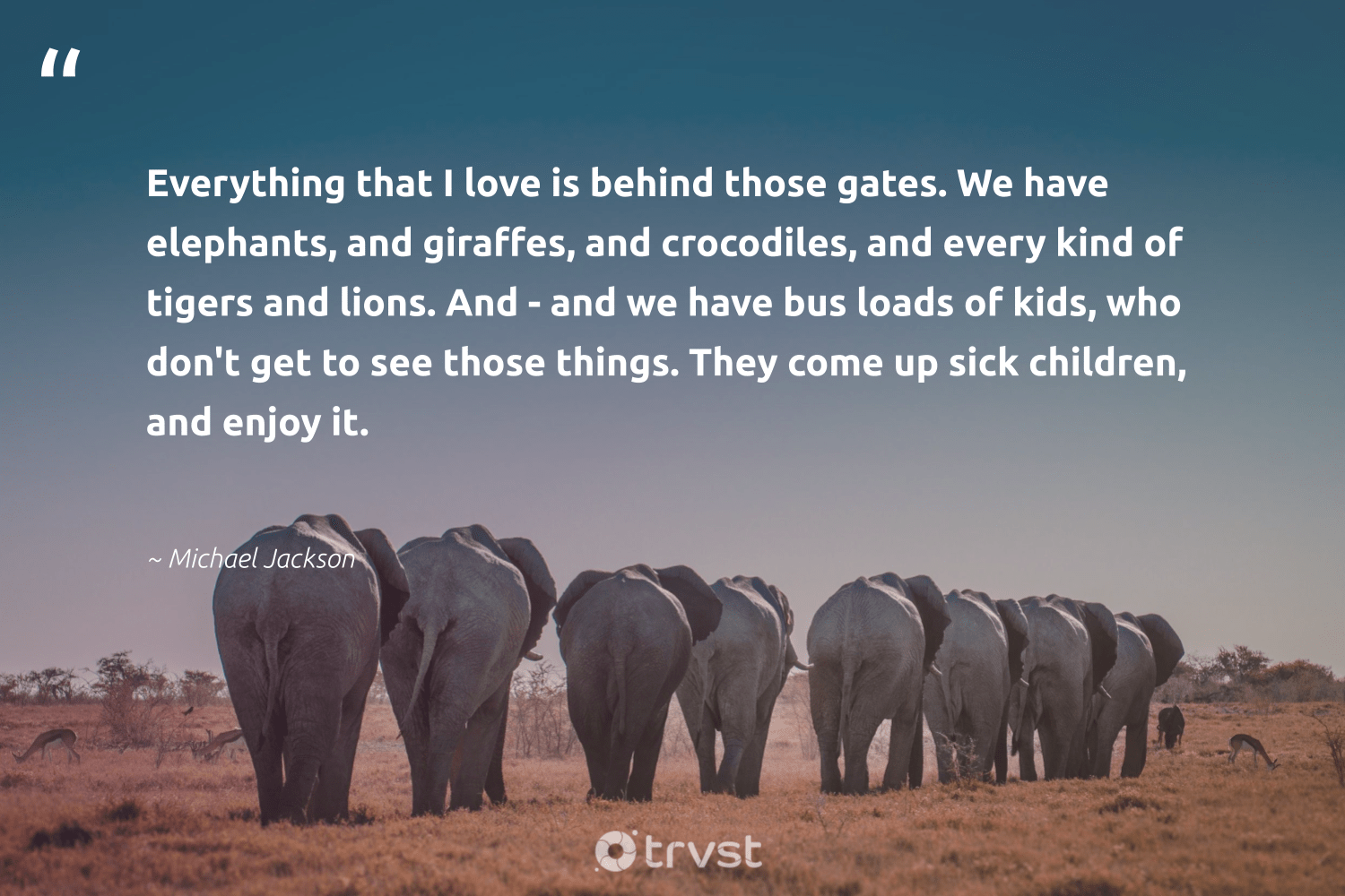 """""""Everything that I love is behind those gates. We have elephants, and giraffes, and crocodiles, and every kind of tigers and lions. And - and we have bus loads of kids, who don't get to see those things. They come up sick children, and enjoy it.""""  - Michael Jackson #trvst #quotes #love #children #elephants #savetheelephants #beinspired #wildanimals #ecoconscious #animals #thinkgreen #conservation"""
