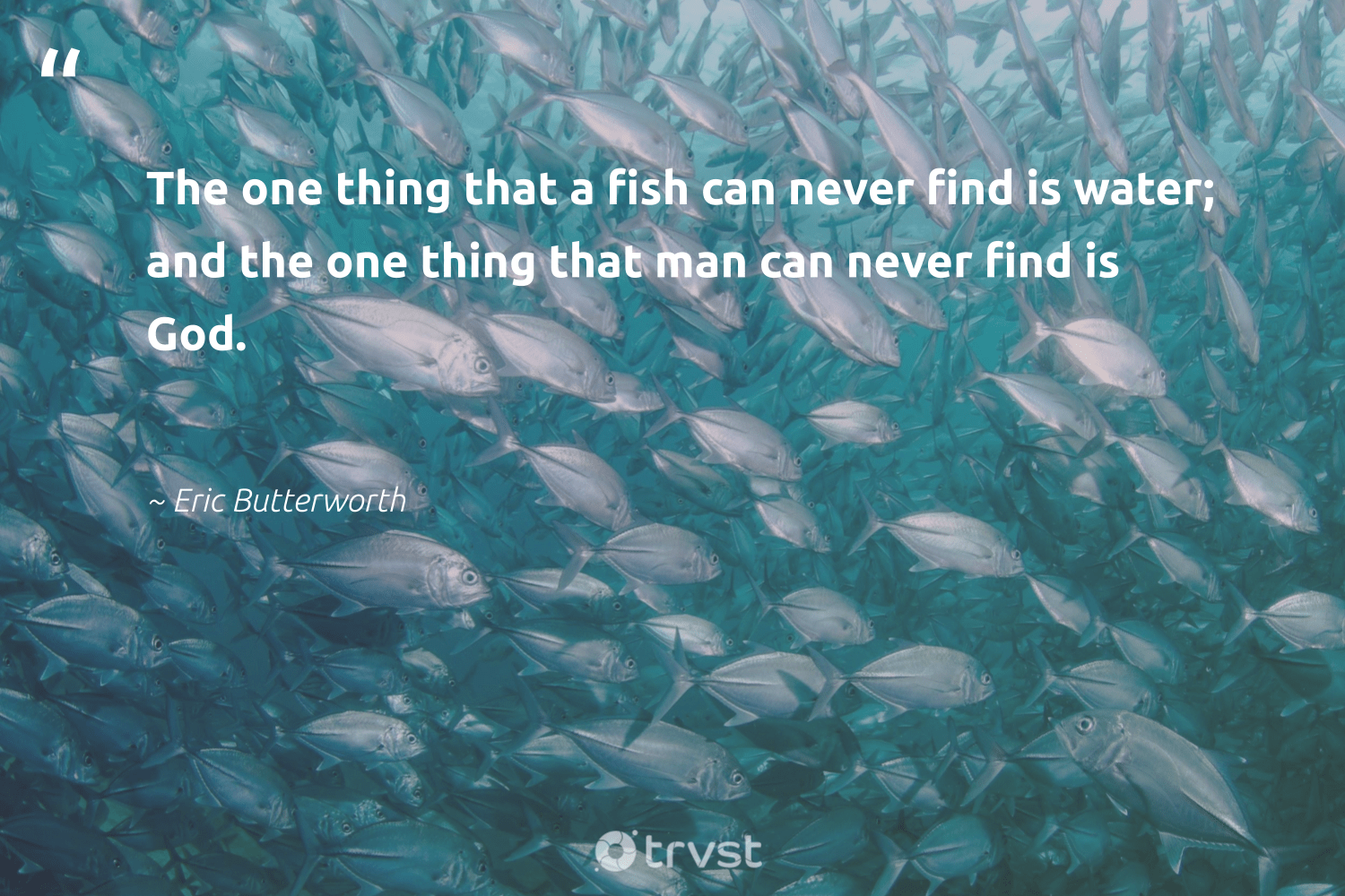 """""""The one thing that a fish can never find is water; and the one thing that man can never find is God.""""  - Eric Butterworth #trvst #quotes #fish #nature #beinspired #perfectnature #planetearthfirst #intheocean #ecoconscious #sustainablefishing #dosomething #oceans"""