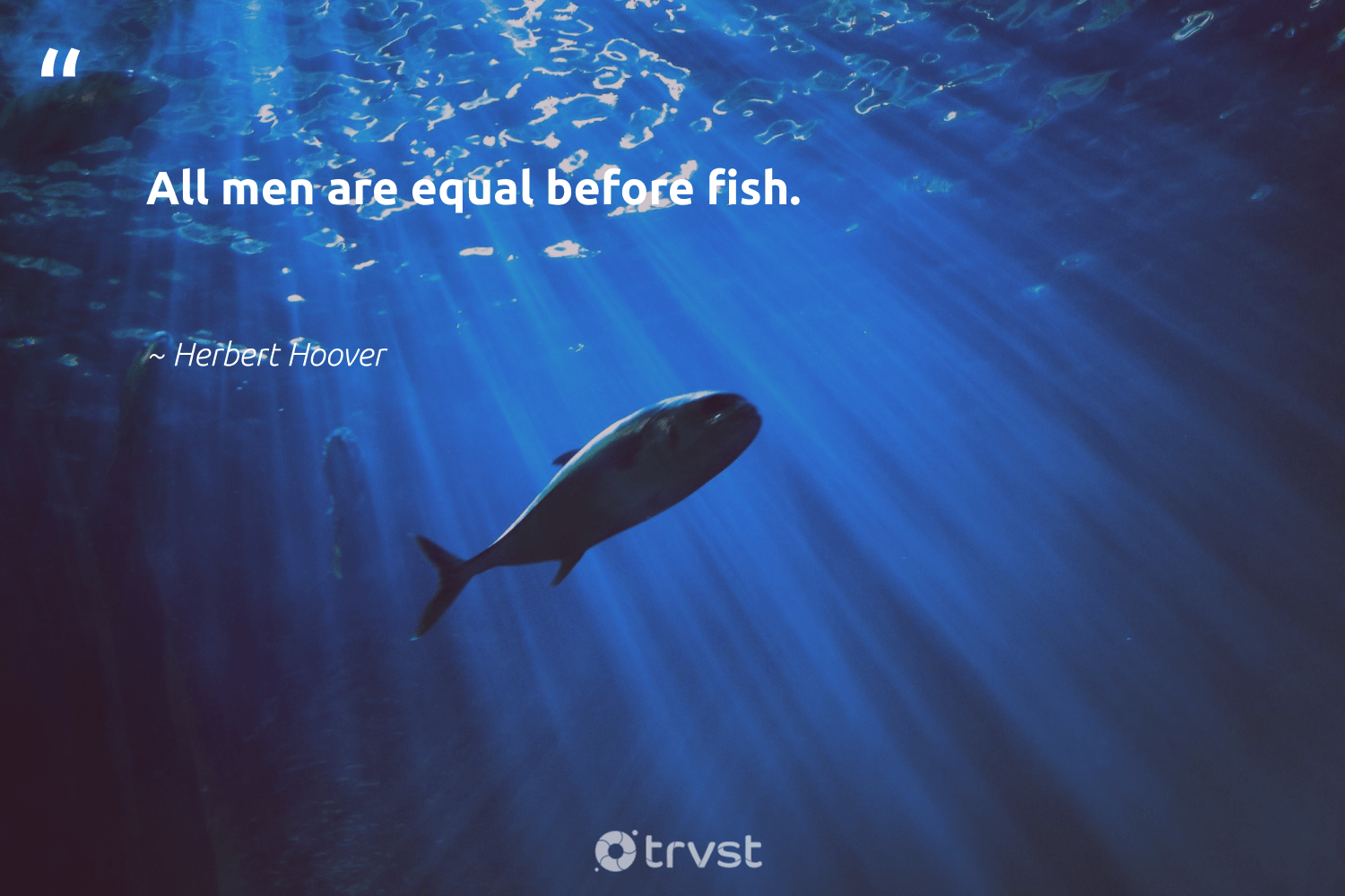 """""""All men are equal before fish.""""  - Herbert Hoover #trvst #quotes #fish #conservation #dosomething #savetheoceans #impact #oceanlove #planetearthfirst #protecttheoceans #collectiveaction #oceanconservation"""