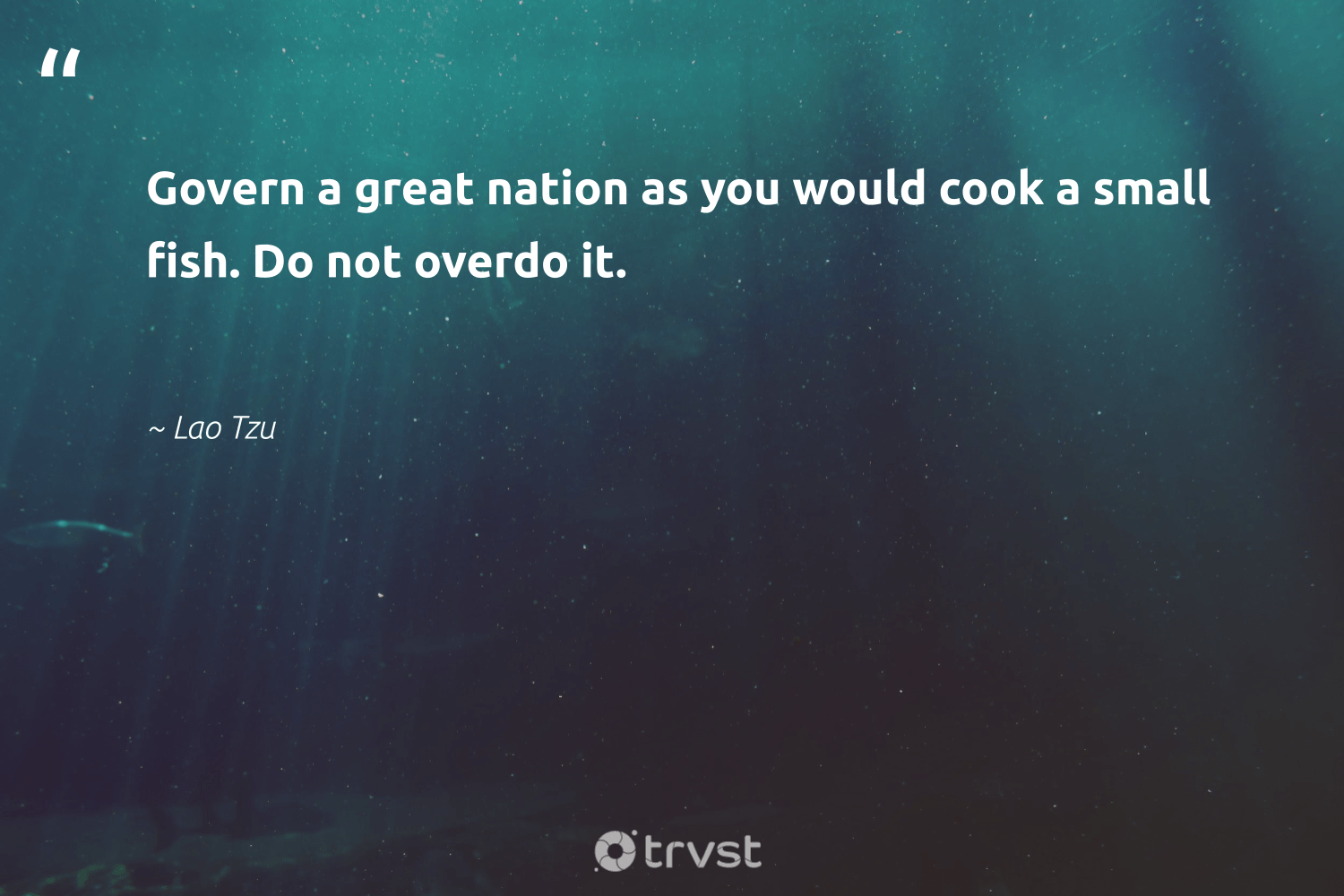 """""""Govern a great nation as you would cook a small fish. Do not overdo it.""""  - Lao Tzu #trvst #quotes #fish #protecttheoceans #bethechange #conservation #changetheworld #oceanconservation #socialchange #nature #planetearthfirst #biodiversity"""