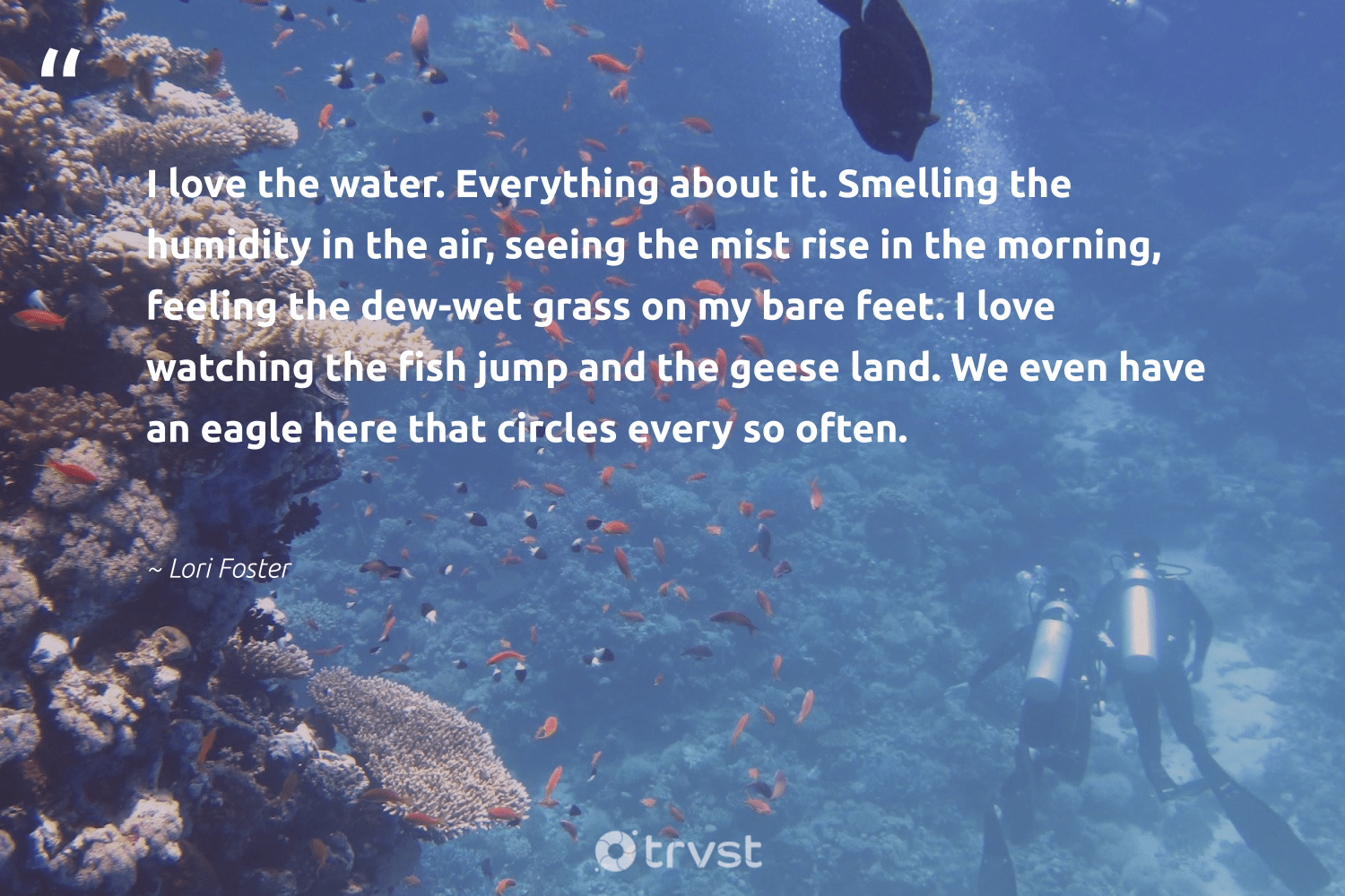 """""""I love the water. Everything about it. Smelling the humidity in the air, seeing the mist rise in the morning, feeling the dew-wet grass on my bare feet. I love watching the fish jump and the geese land. We even have an eagle here that circles every so often.""""  - Lori Foster #trvst #quotes #love #water #fish #ocean #sealife #eco #planetearthfirst #saveourocean #conservation #naturelovers"""