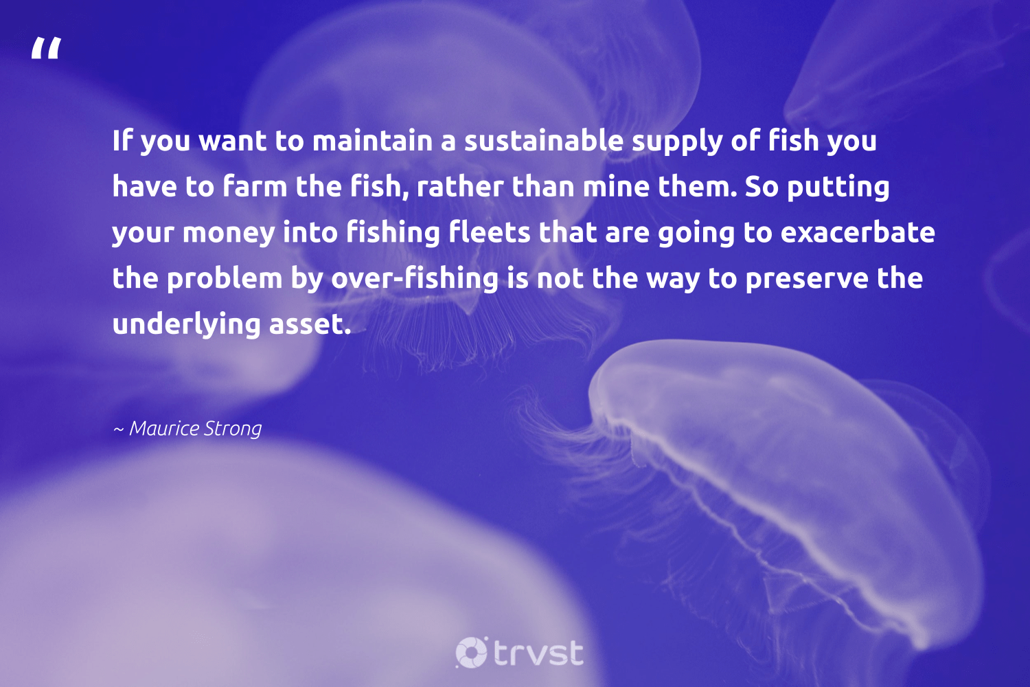 """""""If you want to maintain a sustainable supply of fish you have to farm the fish, rather than mine them. So putting your money into fishing fleets that are going to exacerbate the problem by over-fishing is not the way to preserve the underlying asset.""""  - Maurice Strong #trvst #quotes #sustainable #fishing #fish #sustainableliving #conservation #fashion #gogreen #sustainability #wildlifeprotection #green"""