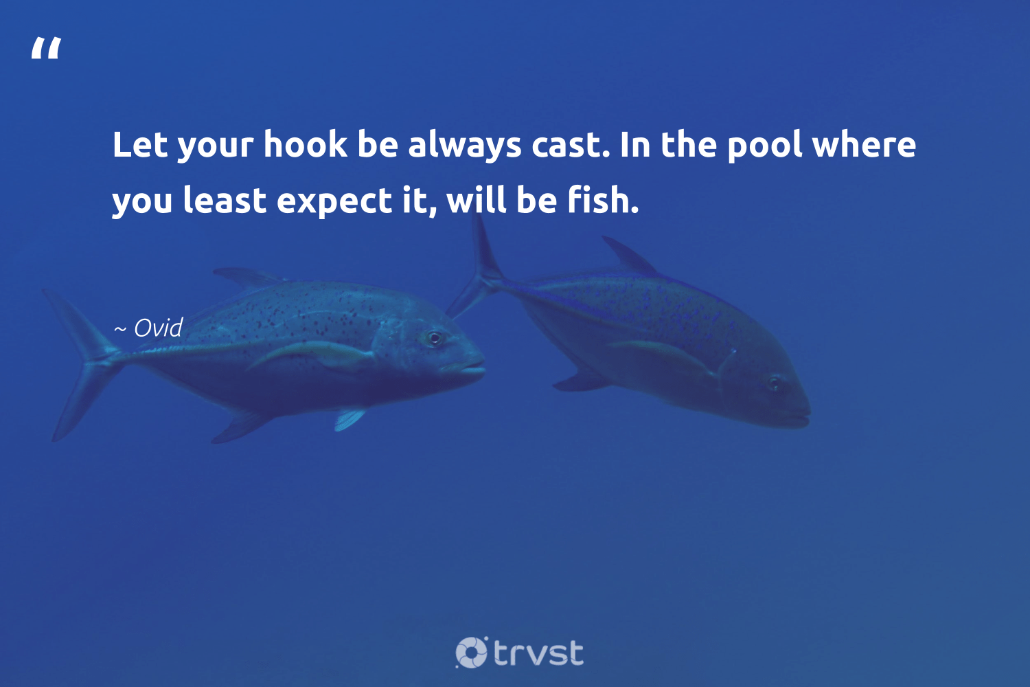 """""""Let your hook be always cast. In the pool where you least expect it, will be fish.""""  - Ovid #trvst #quotes #fish #nature #ecoconscious #biodiversity #bethechange #sustainability #beinspired #oceans #dosomething #protecttheoceans"""
