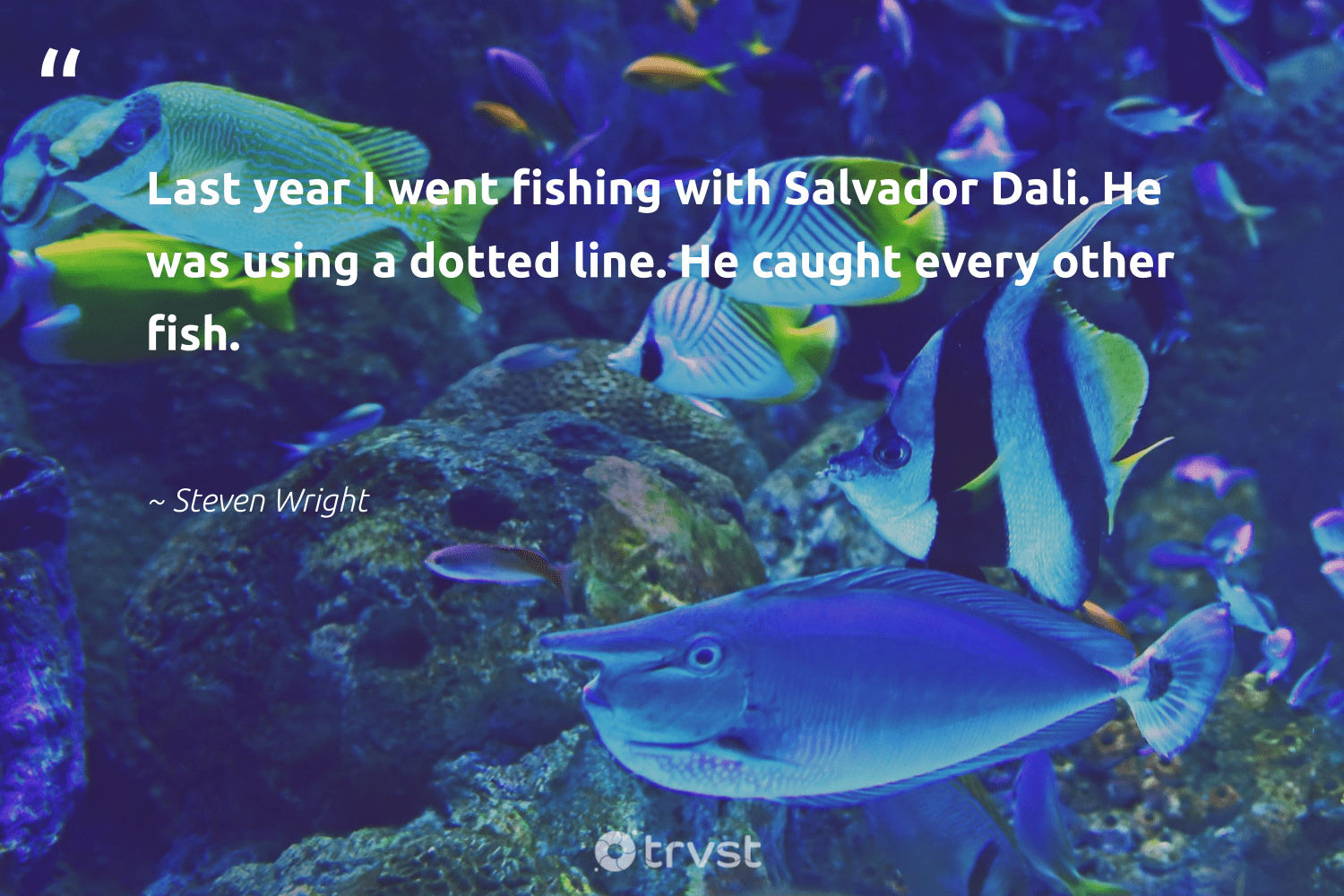 """""""Last year I went fishing with Salvador Dali. He was using a dotted line. He caught every other fish.""""  - Steven Wright #trvst #quotes #fishing #fish #sustainability #socialchange #savetheoceans #beinspired #oceans #dogood #wildlifeprotection #impact"""
