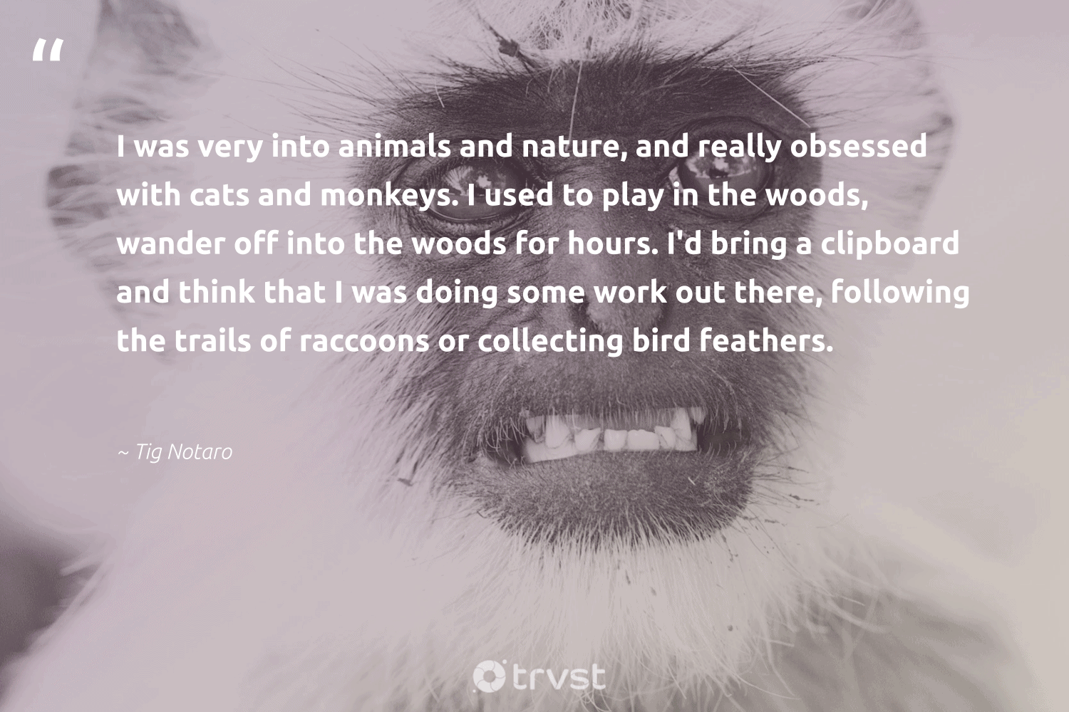 """I was very into animals and nature, and really obsessed with cats and monkeys. I used to play in the woods, wander off into the woods for hours. I'd bring a clipboard and think that I was doing some work out there, following the trails of raccoons or collecting bird feathers.""  - Tig Notaro #trvst #quotes #nature #bird #animals #feathers #monkeys #environment #amazingworld #sustainability #socialchange #planet"