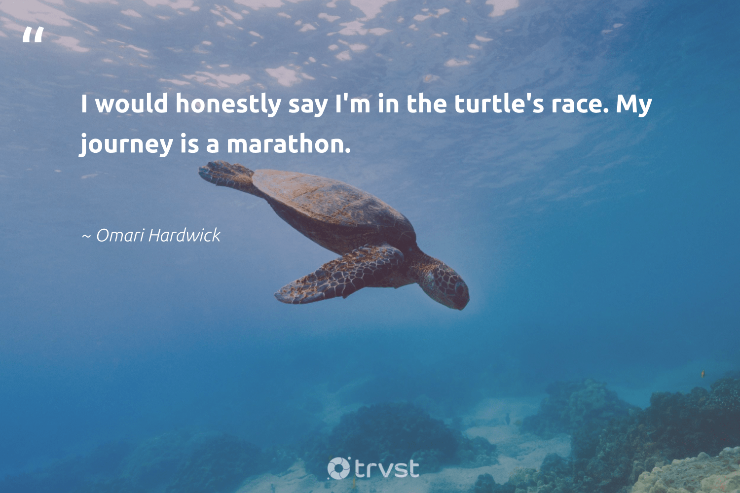"""I would honestly say I'm in the turtle's race. My journey is a marathon.""  - Omari Hardwick #trvst #quotes #turtles #savetheoceans #dosomething #sustainablefishing #beinspired #oceans #thinkgreen #marinelife #bethechange #oceanconservation"