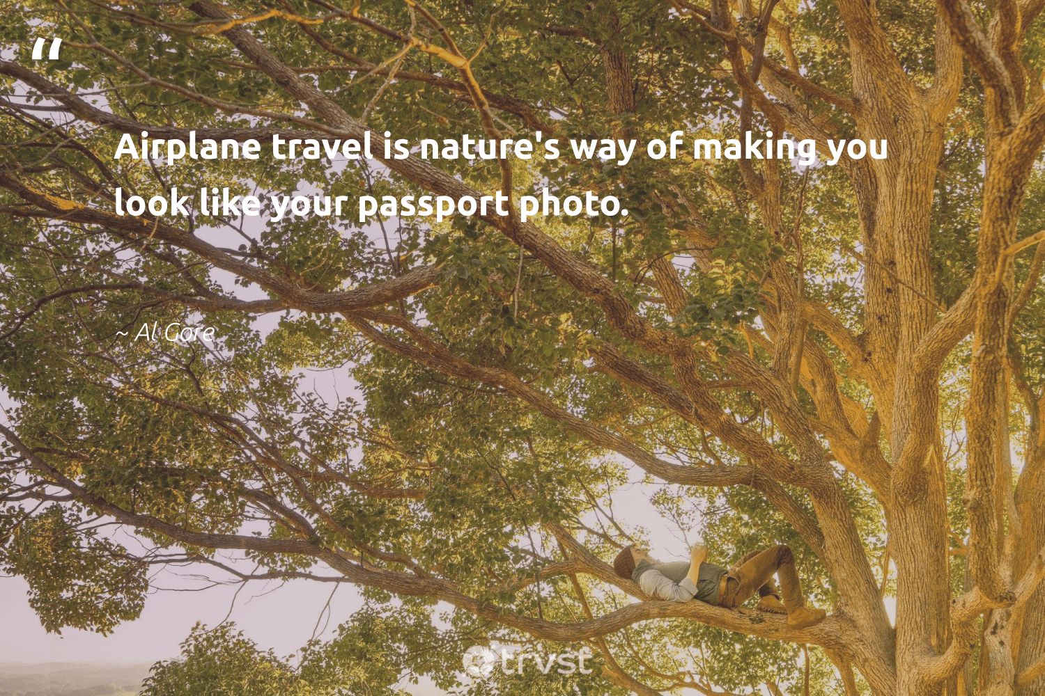 """""""Airplane travel is nature's way of making you look like your passport photo.""""  - Al Gore #trvst #quotes #travel #shellfish #sustainable #geology #thinkgreen #mollusc #giveback #cheetah #dotherightthing #nature"""