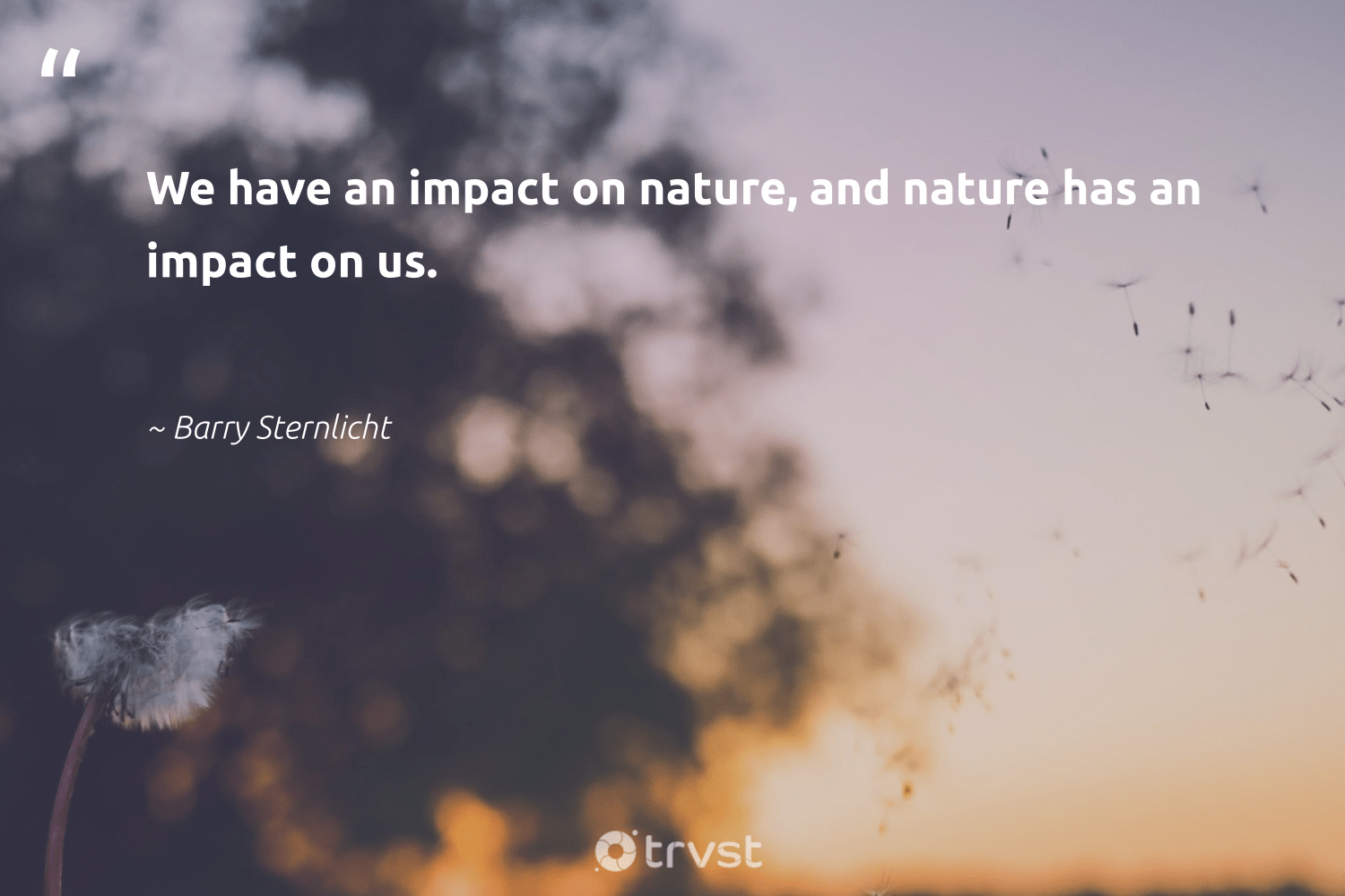 """""""We have an impact on nature, and nature has an impact on us.""""  - Barry Sternlicht #trvst #quotes #environment #impact #nature #mothernature #naturelovers #earth #beinspired #conservation #sustainability #wildernessnation"""