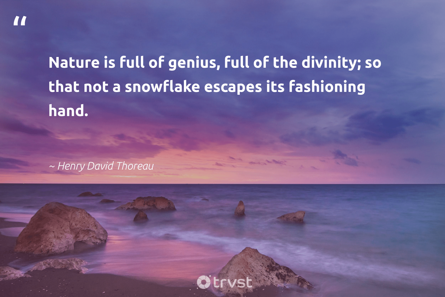"""""""Nature is full of genius, full of the divinity; so that not a snowflake escapes its fashioning hand.""""  - Henry David Thoreau #trvst #quotes #environment #nature #planet #volunteer #savetheplanet #collectiveaction #sustainable #earth #bethechange #conservation"""
