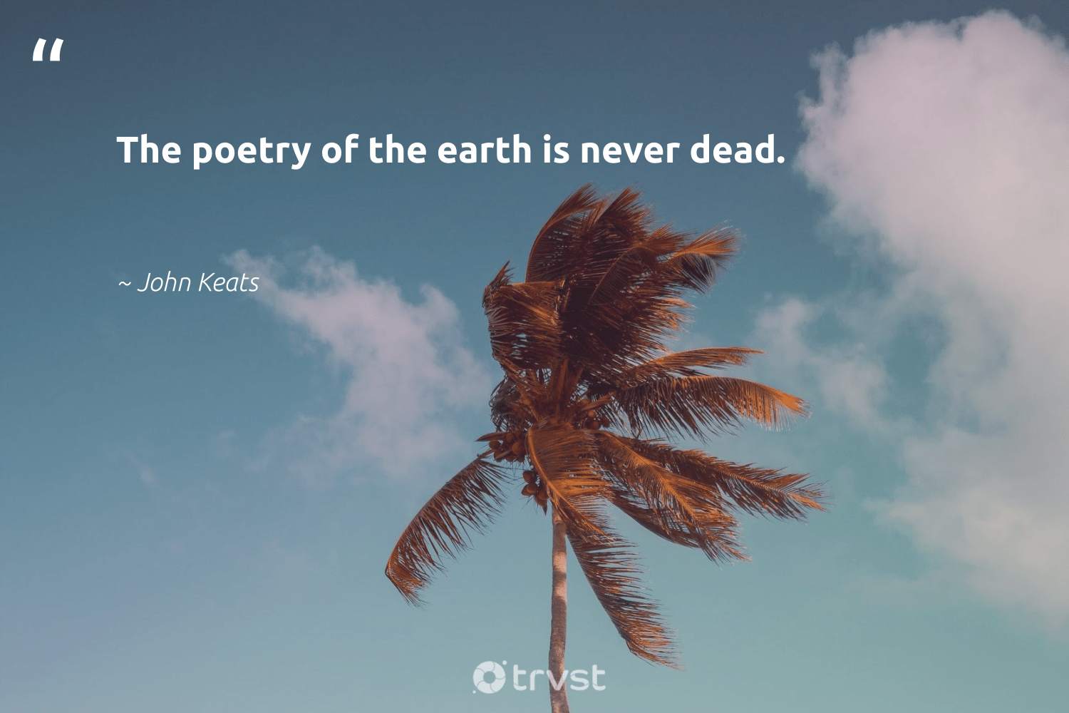 """""""The poetry of the earth is never dead.""""  - John Keats #trvst #quotes #environment #earth #environmentallyfriendly #wildlifeplanet #thinkgreen #nature #noplanetb #volunteer #dotherightthing #conservation"""