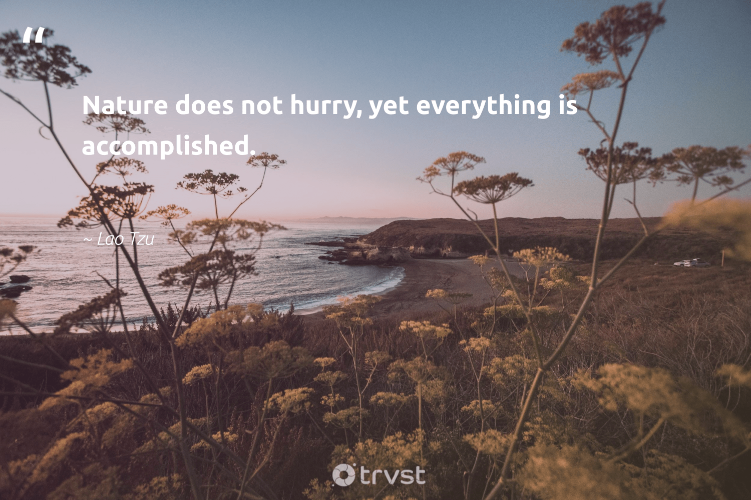 """""""Nature does not hurry, yet everything is accomplished.""""  - Lao Tzu #trvst #quotes #environment #nature #green #wildernessnation #takeaction #planet #noplanetb #gogreen #beinspired #mothernature"""