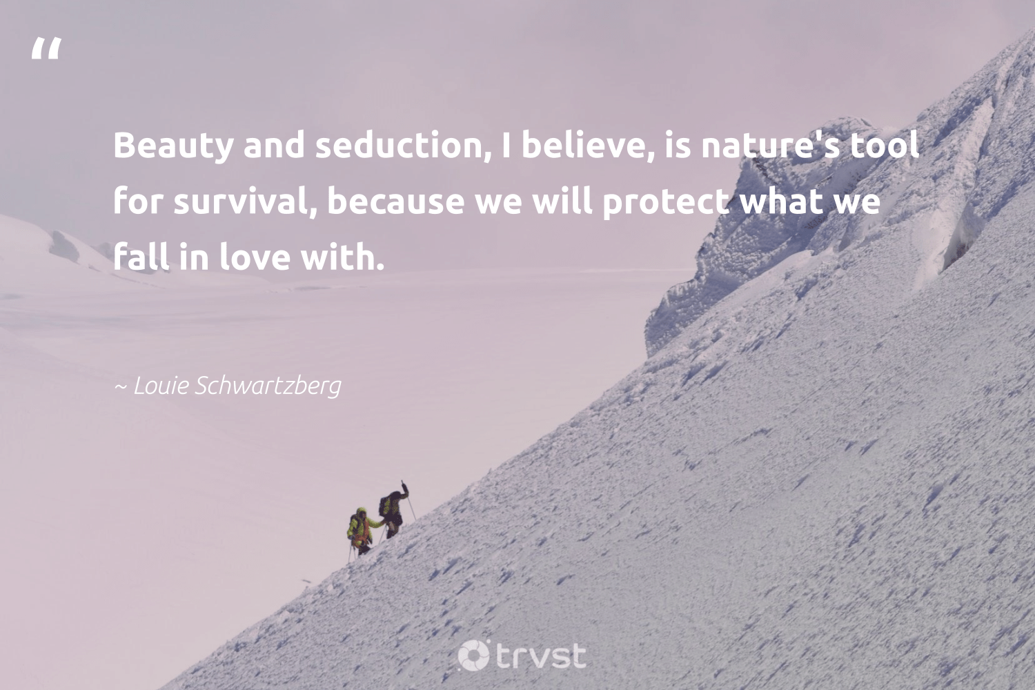 """""""Beauty and seduction, I believe, is nature's tool for survival, because we will protect what we fall in love with.""""  - Louie Schwartzberg #trvst #quotes #love #beauty #earth #takeaction #volunteer #dotherightthing #ecofriendly #changetheworld #environmentallyfriendly #ecoconscious"""