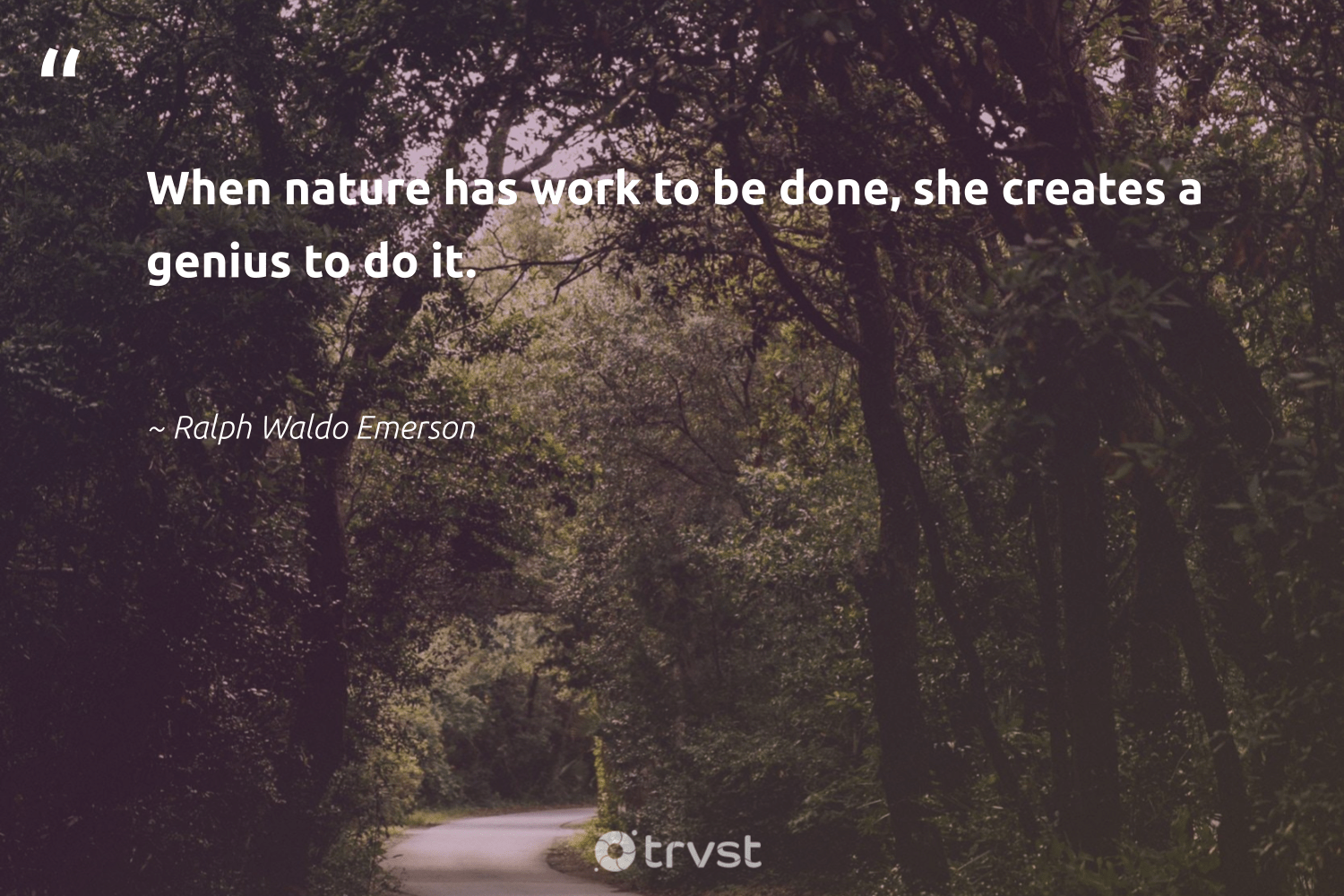 """""""When nature has work to be done, she creates a genius to do it.""""  - Ralph Waldo Emerson #trvst #quotes #environment #nature #earth #climatechange #environmentallyfriendly #impact #mothernature #getoutside #ecofriendly #socialchange"""