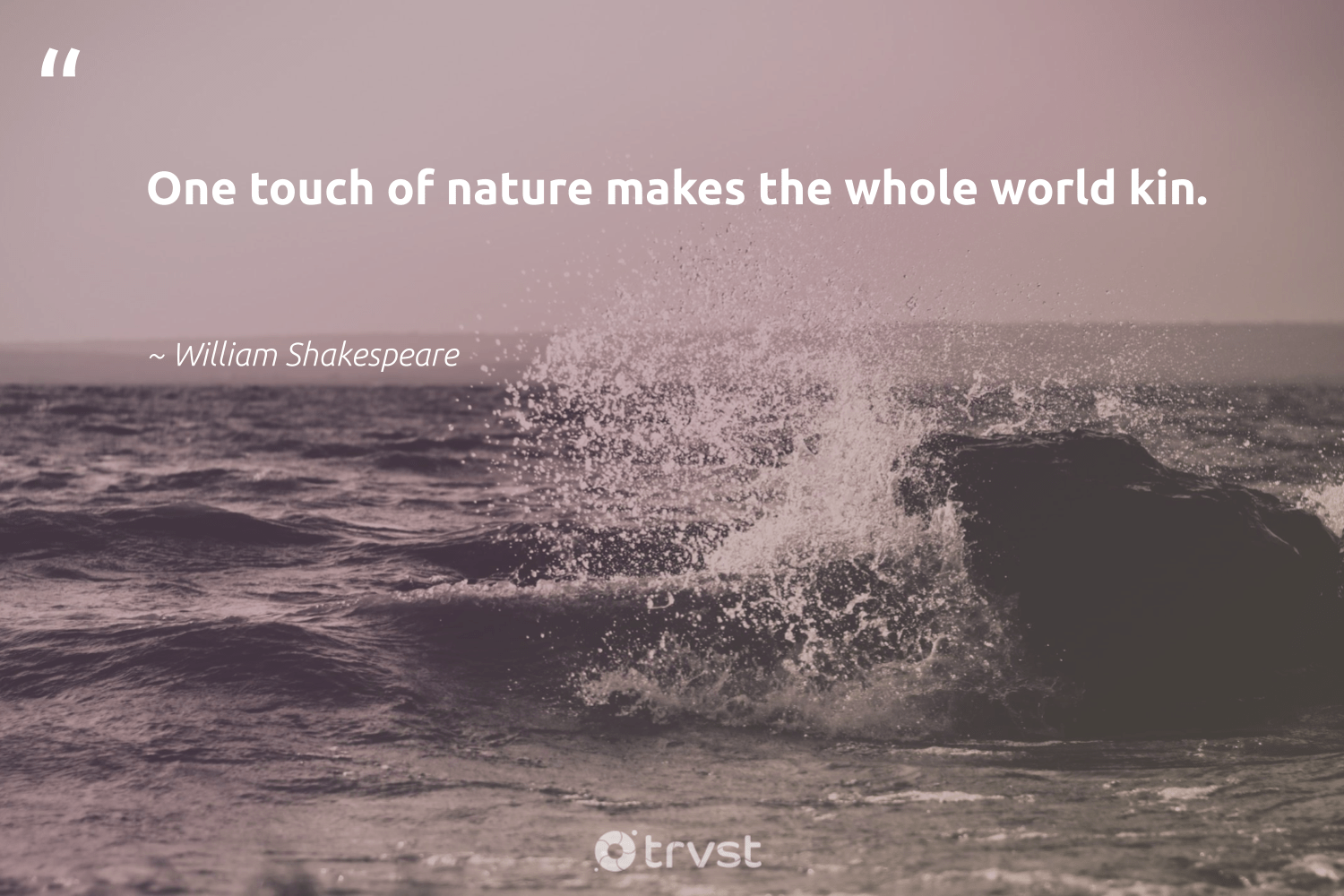 """""""One touch of nature makes the whole world kin.""""  - William Shakespeare #trvst #quotes #environment #nature #planet #volunteer #sustainable #dosomething #earth #eco #gogreen #dogood"""