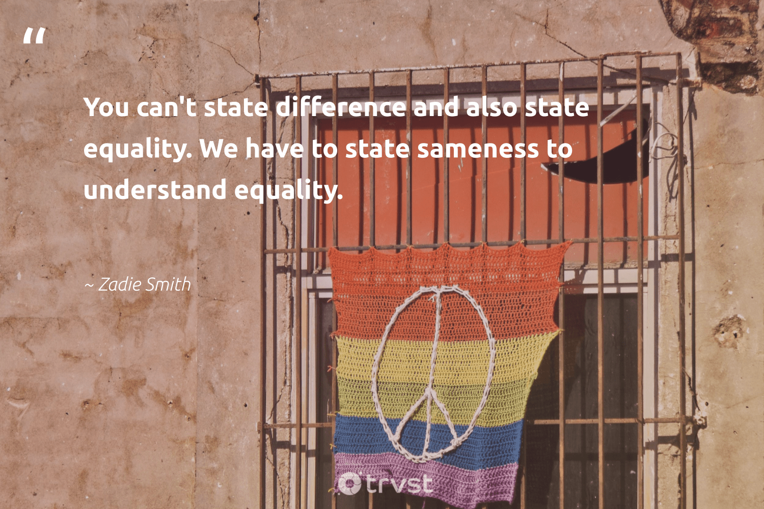 """You can't state difference and also state equality. We have to state sameness to understand equality.""  - Zadie Smith #trvst #quotes #equality #empowerment #weareallone #giveback #beinspired #equalrights #socialgood #makeadifference #dogood #standup"