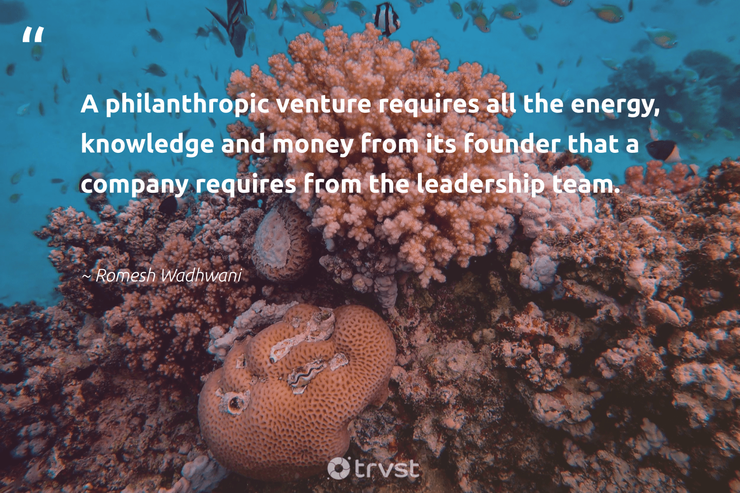 """A philanthropic venture requires all the energy, knowledge and money from its founder that a company requires from the leadership team.""  - Romesh Wadhwani #trvst #quotes #energy #leadership #philanthropic #leadershipskills #togetherwecan #nevergiveup #planetearthfirst #leadershipdevelopment #itscooltobekind #futureofwork"