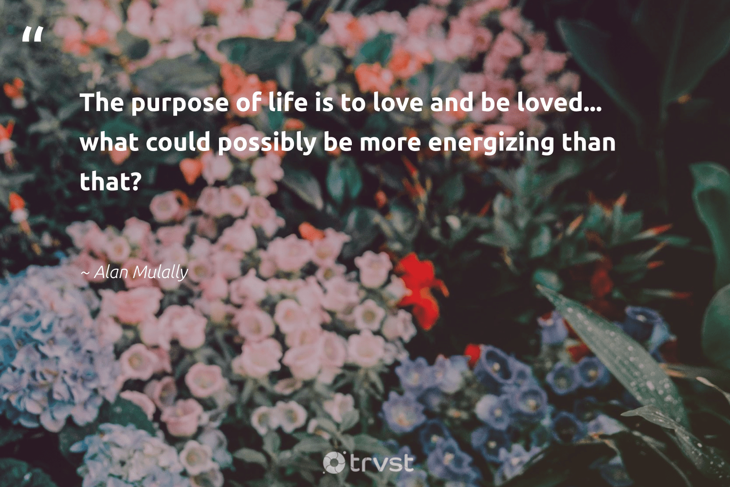 """""""The purpose of life is to love and be loved... what could possibly be more energizing than that?""""  - Alan Mulally #trvst #quotes #purpose #love #purposedriven #mindset #health #planetearthfirst #findingpupose #changemakers #nevergiveup #dogood"""