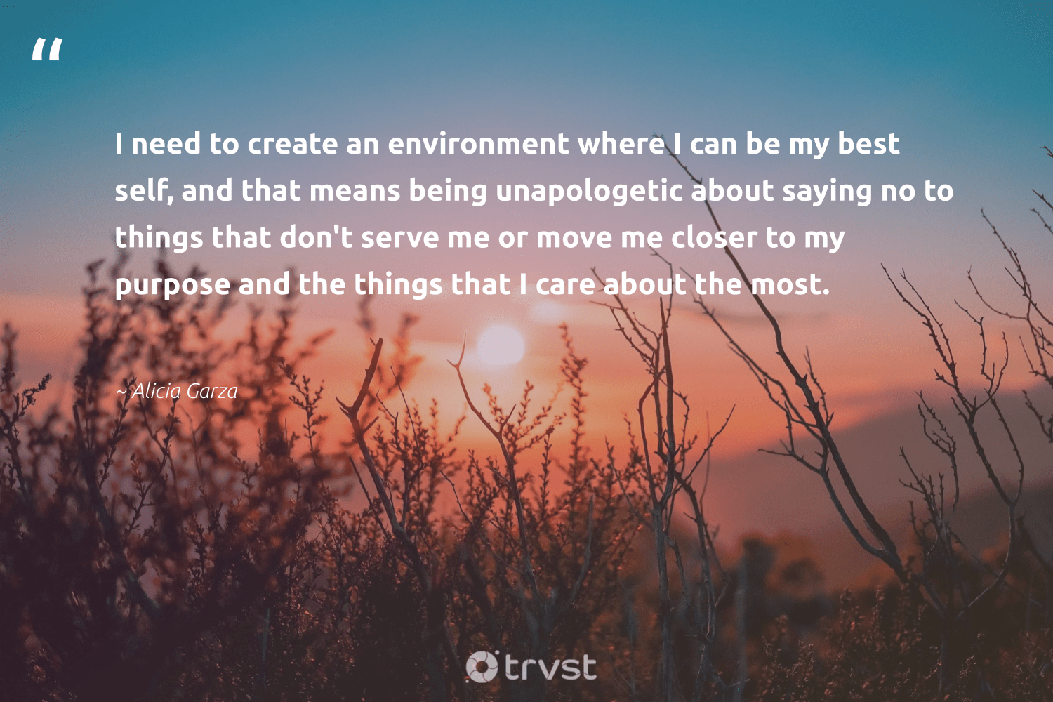 """""""I need to create an environment where I can be my best self, and that means being unapologetic about saying no to things that don't serve me or move me closer to my purpose and the things that I care about the most.""""  - Alicia Garza #trvst #quotes #environment #purpose #earth #begreat #sustainableliving #beinspired #conservation #mindset #sustainability #takeaction"""