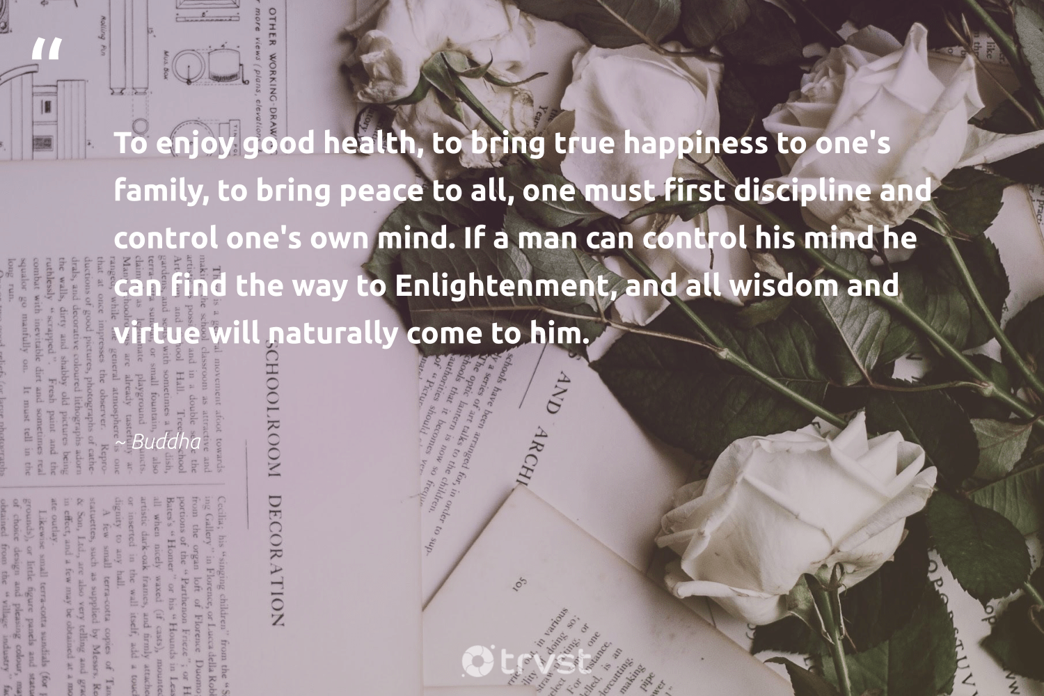 """""""To enjoy good health, to bring true happiness to one's family, to bring peace to all, one must first discipline and control one's own mind. If a man can control his mind he can find the way to Enlightenment, and all wisdom and virtue will naturally come to him.""""  - Buddha #trvst #quotes #peace #family #health #wisdom #happiness #activist #begreat #socialimpact #dogood #activism"""