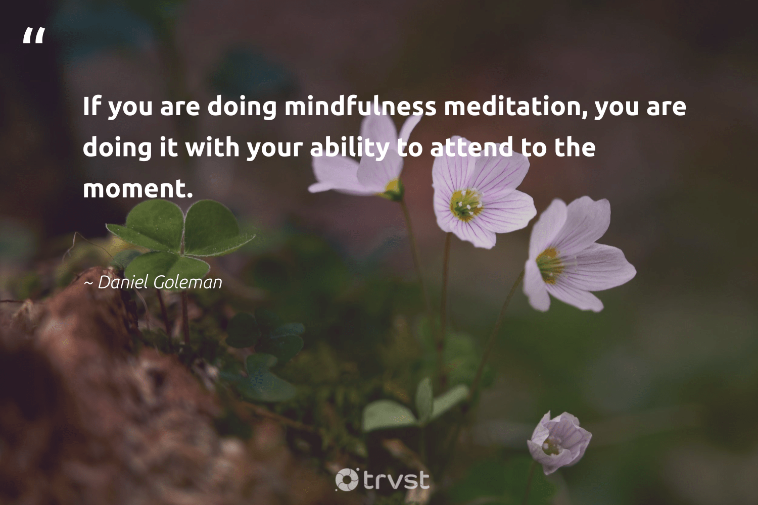 """""""If you are doing mindfulness meditation, you are doing it with your ability to attend to the moment.""""  - Daniel Goleman #trvst #quotes #mindfulness #meditation #motivation #creativemindset #mentalheatlh #health #bethechange #growthmindset #positivity #happiness"""