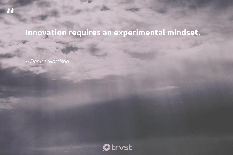 """""""Innovation requires an experimental mindset.""""  - Denise Morrison #trvst #quotes #mindset #meditate #begreat #health #dotherightthing #meditation #nevergiveup #togetherwecan #changetheworld #creativemindset"""