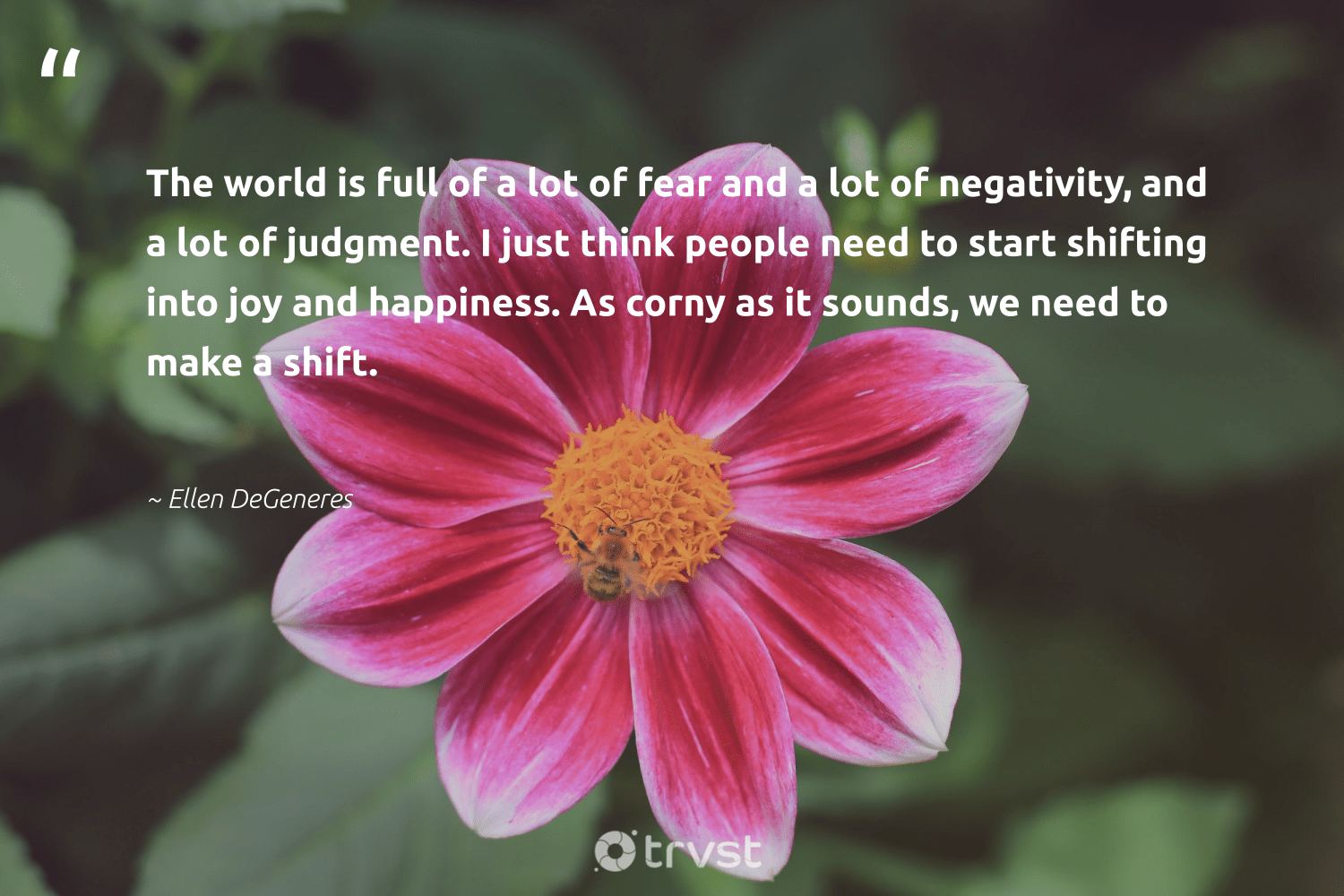 """""""The world is full of a lot of fear and a lot of negativity, and a lot of judgment. I just think people need to start shifting into joy and happiness. As corny as it sounds, we need to make a shift.""""  - Ellen DeGeneres #trvst #quotes #happiness #nevergiveup #ecoconscious #mindset #changetheworld #health #bethechange #togetherwecan #socialimpact #begreat"""