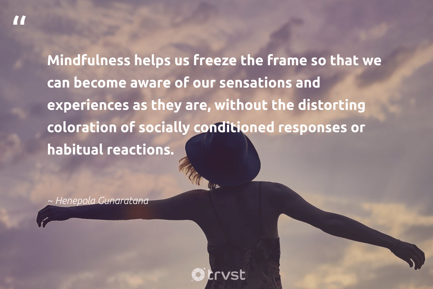 """""""Mindfulness helps us freeze the frame so that we can become aware of our sensations and experiences as they are, without the distorting coloration of socially conditioned responses or habitual reactions.""""  - Henepola Gunaratana #trvst #quotes #mindfulness #meditate #happiness #nevergiveup #takeaction #creativemindset #mindful #togetherwecan #collectiveaction #motivation"""