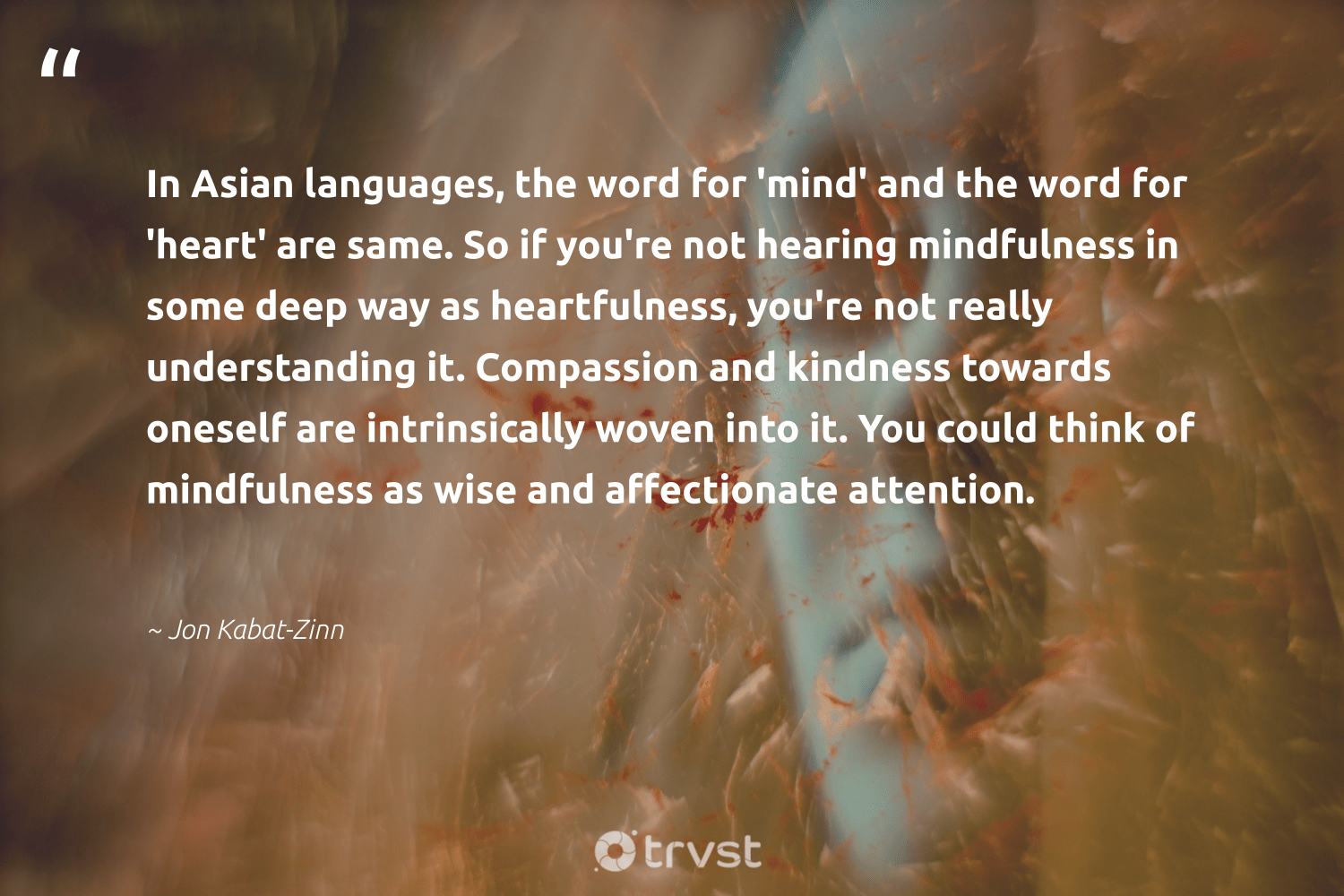 """""""In Asian languages, the word for 'mind' and the word for 'heart' are same. So if you're not hearing mindfulness in some deep way as heartfulness, you're not really understanding it. Compassion and kindness towards oneself are intrinsically woven into it. You could think of mindfulness as wise and affectionate attention.""""  - Jon Kabat-Zinn #trvst #quotes #mindfulness #kindness #mindset #mentalheatlh #togetherwecan #takeaction #growthmindset #mindful #nevergiveup #thinkgreen"""