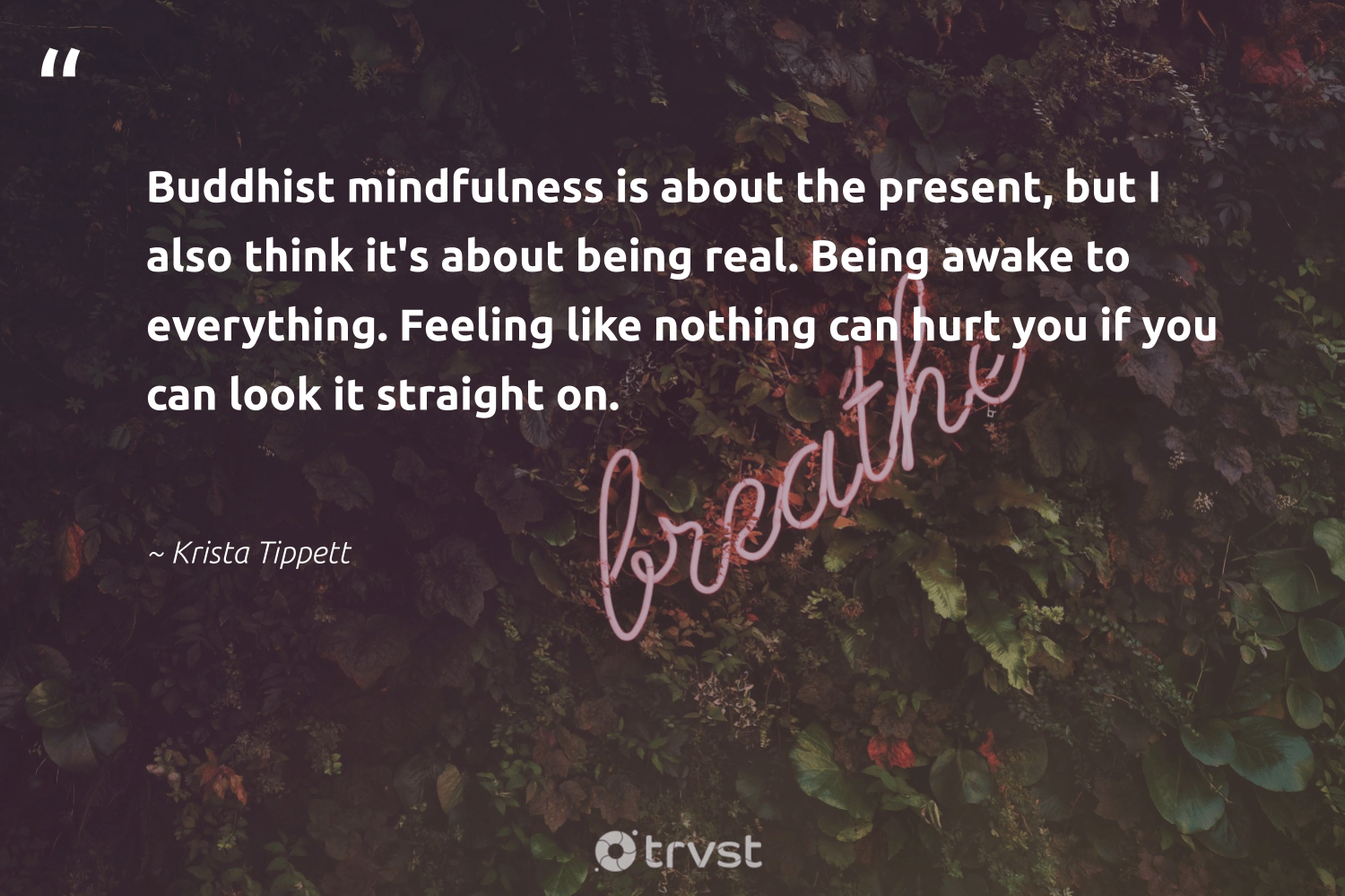 """""""Buddhist mindfulness is about the present, but I also think it's about being real. Being awake to everything. Feeling like nothing can hurt you if you can look it straight on.""""  - Krista Tippett #trvst #quotes #mindfulness #meditation #mindful #begreat #impact #goals #wellness #health #socialimpact #creativemindset"""