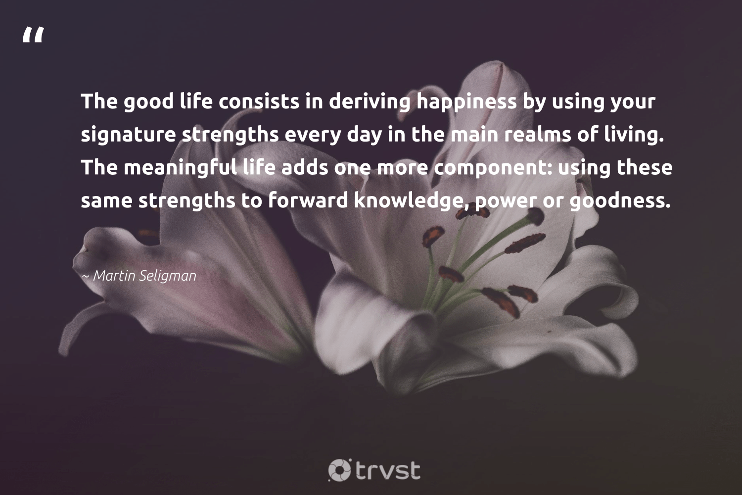 """""""The good life consists in deriving happiness by using your signature strengths every day in the main realms of living. The meaningful life adds one more component: using these same strengths to forward knowledge, power or goodness.""""  - Martin Seligman #trvst #quotes #happiness #togetherwecan #changetheworld #begreat #socialchange #changemakers #thinkgreen #health #collectiveaction #nevergiveup"""