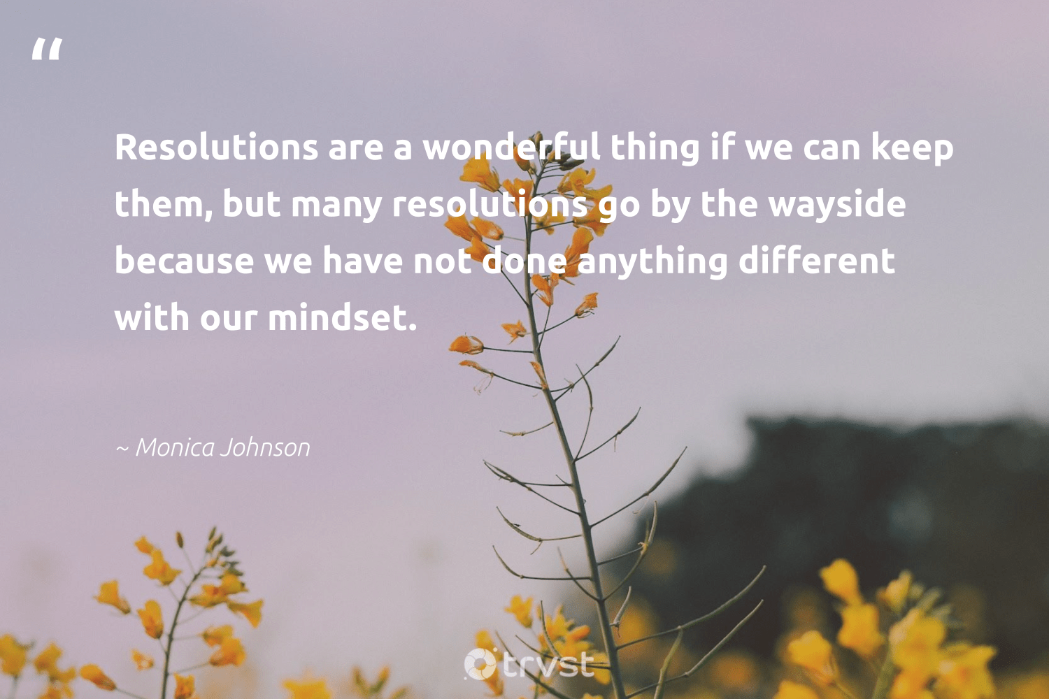"""""""Resolutions are a wonderful thing if we can keep them, but many resolutions go by the wayside because we have not done anything different with our mindset.""""  - Monica Johnson #trvst #quotes #mindset #motivation #nevergiveup #begreat #dogood #mindfulness #changemakers #togetherwecan #bethechange #meditation"""