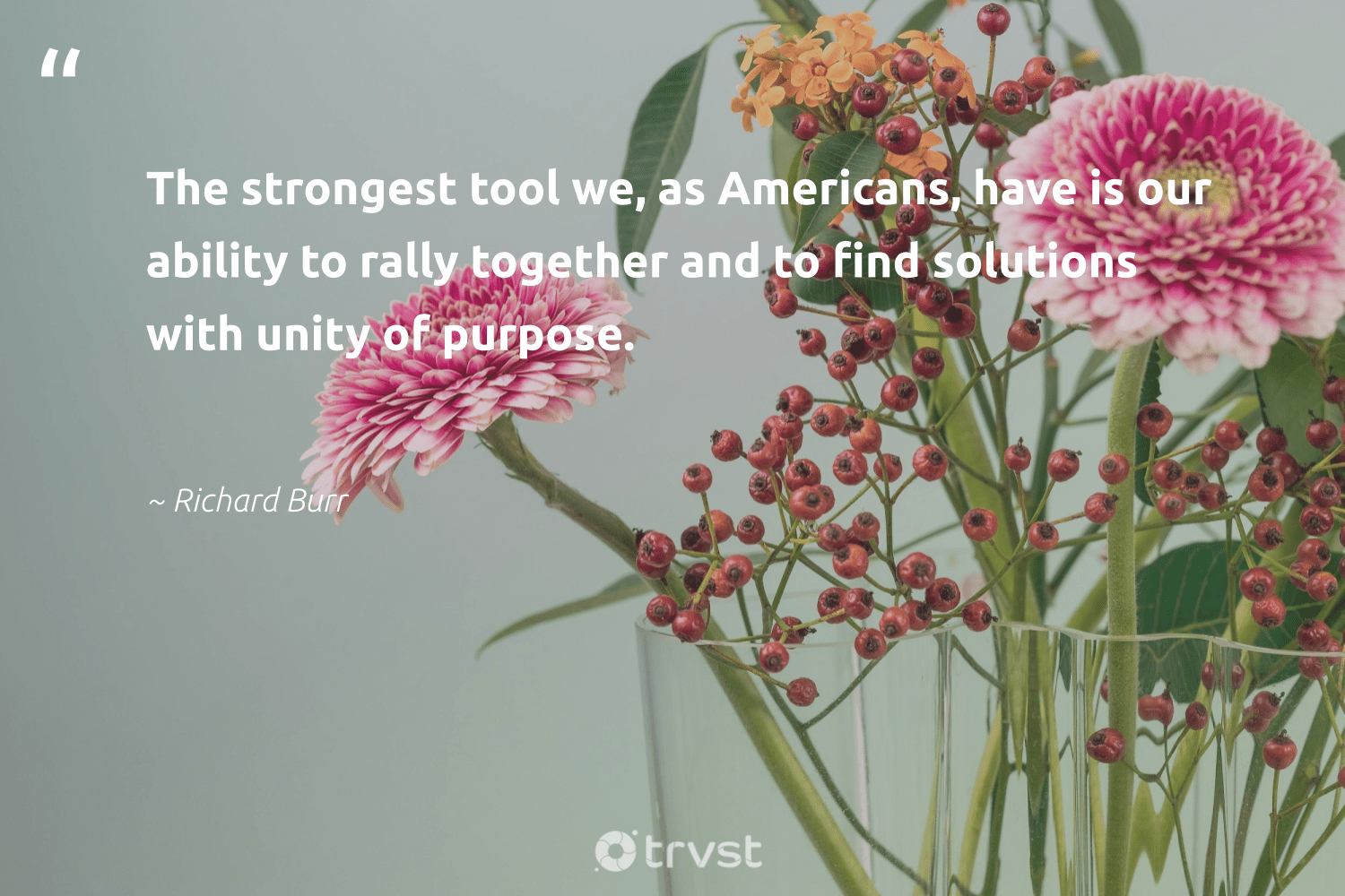 """""""The strongest tool we, as Americans, have is our ability to rally together and to find solutions with unity of purpose.""""  - Richard Burr #trvst #quotes #purpose #findingpupose #health #nevergiveup #planetearthfirst #purposedriven #mindset #begreat #thinkgreen #findpurpose"""
