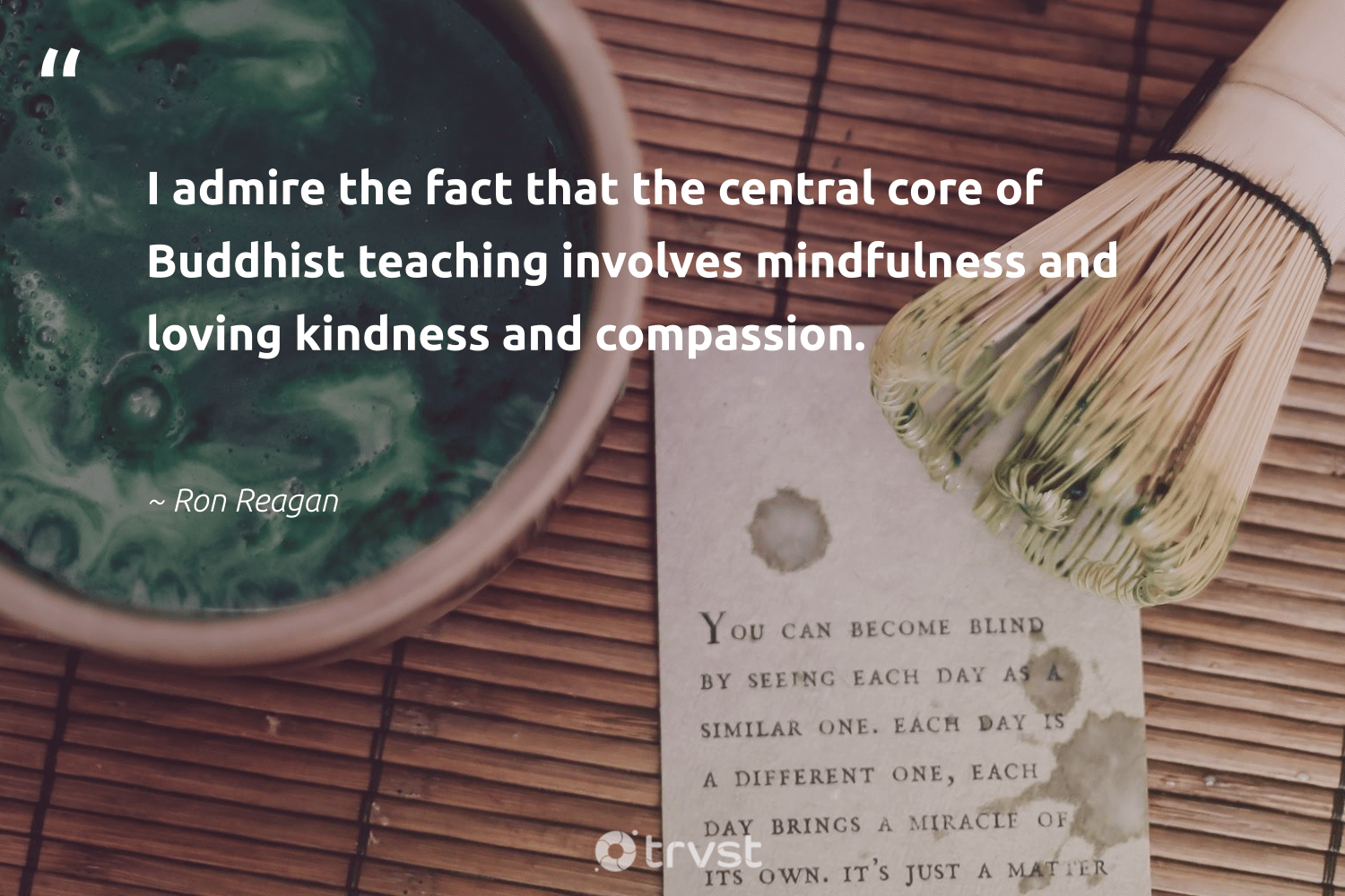 """""""I admire the fact that the central core of Buddhist teaching involves mindfulness and loving kindness and compassion.""""  - Ron Reagan #trvst #quotes #mindfulness #kindness #meditate #mentalheatlh #togetherwecan #planetearthfirst #creativemindset #positivity #nevergiveup #bethechange"""