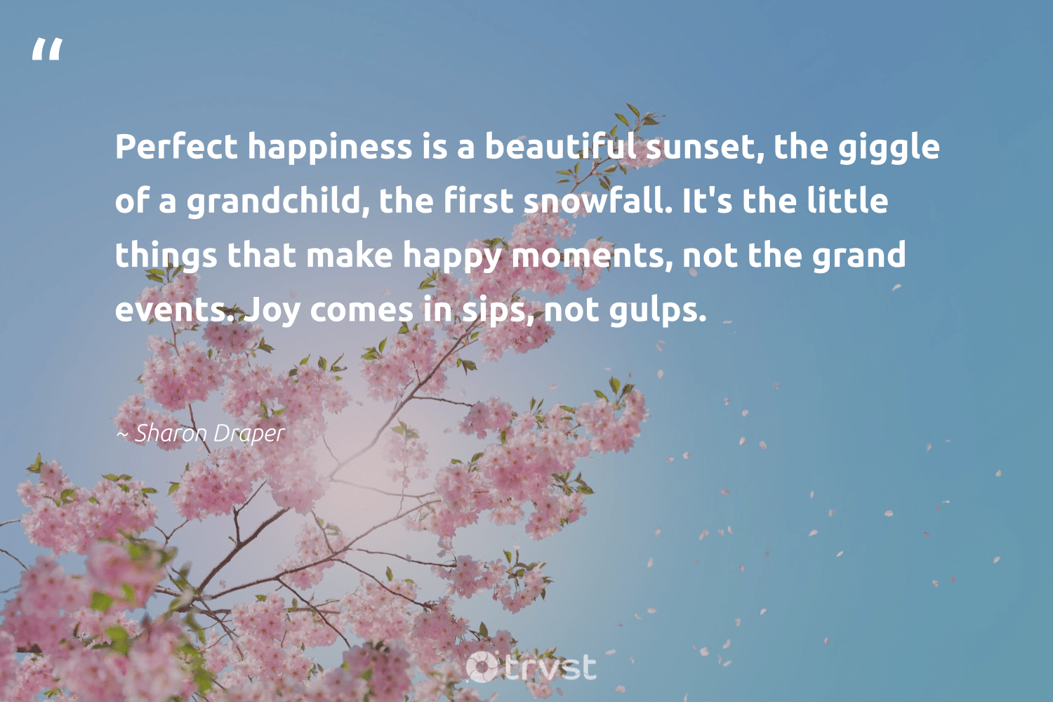 """""""Perfect happiness is a beautiful sunset, the giggle of a grandchild, the first snowfall. It's the little things that make happy moments, not the grand events. Joy comes in sips, not gulps.""""  - Sharon Draper #trvst #quotes #sunset #happy #happiness #mindset #bethechange #begreat #ecoconscious #nevergiveup #socialchange #health"""