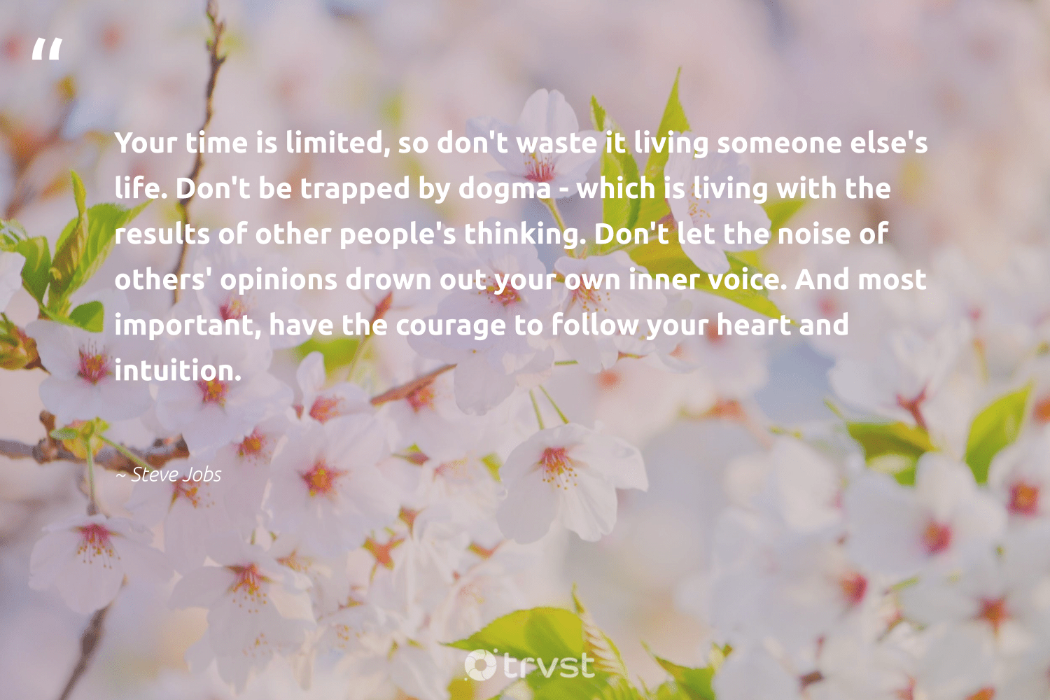 """Your time is limited, so don't waste it living someone else's life. Don't be trapped by dogma - which is living with the results of other people's thinking. Don't let the noise of others' opinions drown out your own inner voice. And most important, have the courage to follow your heart and intuition.""  - Steve Jobs #trvst #quotes #waste #results #begreat #socialimpact #health #planetearthfirst #nevergiveup #thinkgreen #mindset #dotherightthing"