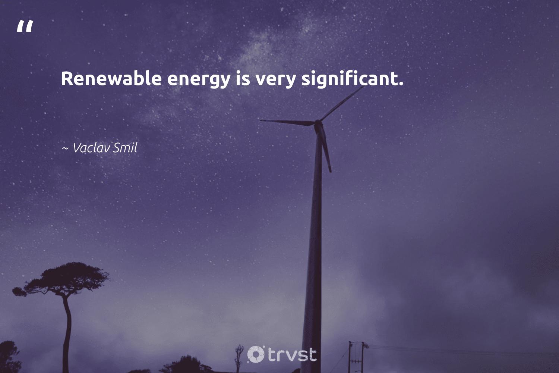 """Renewable energy is very significant.""  - Vaclav Smil #trvst #quotes #renewableenergy #energy #renewable #greenenergy #cleanenergy #sustainableliving #climateaction #socialchange #100percentrenewable #renewables"