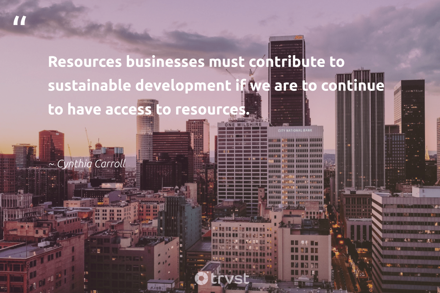 """""""Resources businesses must contribute to sustainable development if we are to continue to have access to resources.""""  - Cynthia Carroll #trvst #quotes #sustainable #development #sustainableliving #dogood #green #takeaction #sustainability #ethicalbusiness #gogreen #planetearthfirst"""