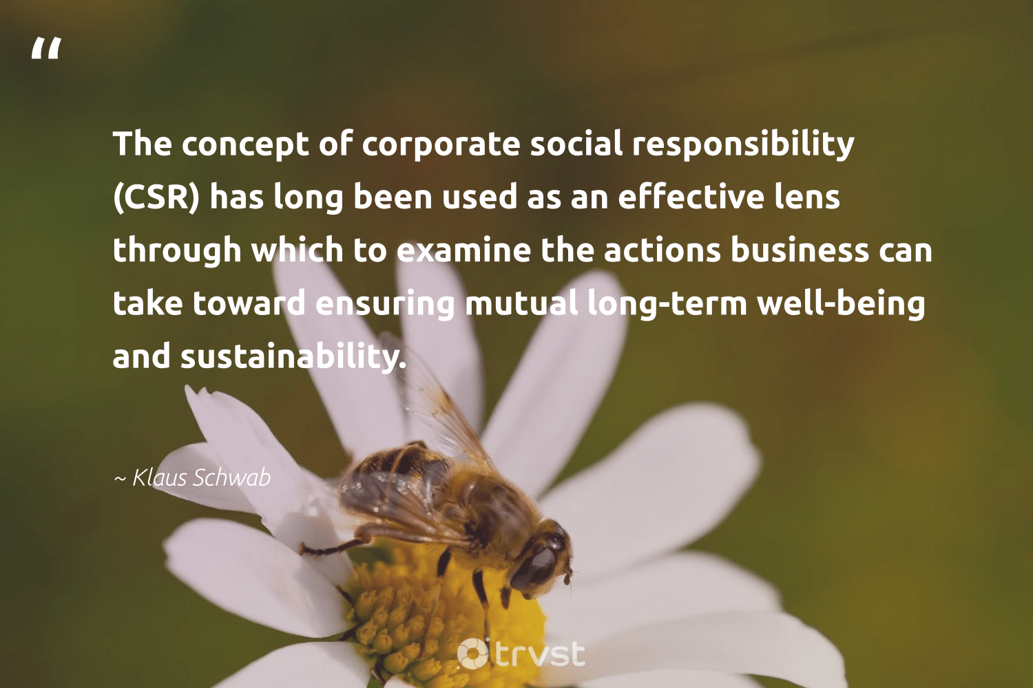 """""""The concept of corporate social responsibility (CSR) has long been used as an effective lens through which to examine the actions business can take toward ensuring mutual long-term well-being and sustainability.""""  - Klaus Schwab #trvst #quotes #CSR #sustainability #corporatesocialresponsibility #wellbeing #corporatevolunteering #sustainable #weareallone #dogood #sharedresponsibility #socialchange"""