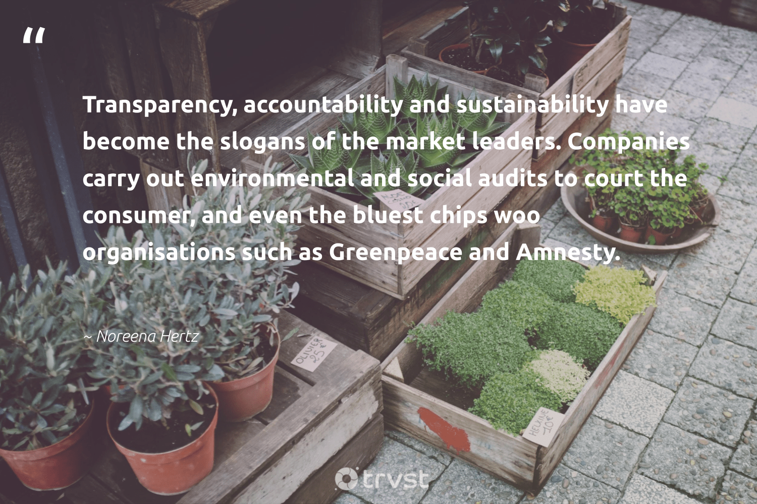 """""""Transparency, accountability and sustainability have become the slogans of the market leaders. Companies carry out environmental and social audits to court the consumer, and even the bluest chips woo organisations such as Greenpeace and Amnesty.""""  - Noreena Hertz #trvst #quotes #sustainability #environmental #sustainableliving #ethicalbusiness #bethechange #dosomething #ecofriendly #giveback #green #thinkgreen"""
