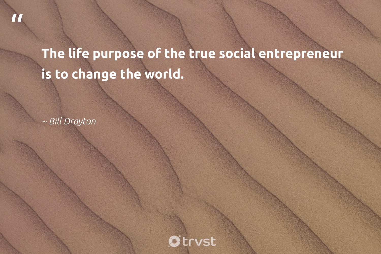 """The life purpose of the true social entrepreneur is to change the world.""  - Bill Drayton #trvst #quotes #socialenterprise #changetheworld #socialentrepreneur #purpose #entrepreneur #socialimpact #ethicalbusiness #dogood #bethechange #sociallyconscious"