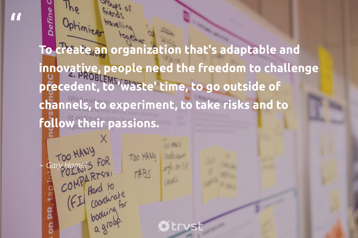 """To create an organization that's adaptable and innovative, people need the freedom to challenge precedent, to 'waste' time, to go outside of channels, to experiment, to take risks and to follow their passions.""  - Gary Hamel #trvst #quotes #freedom #waste #dogood #beinspired #weareallone #ecoconscious #socialchange #planetearthfirst #betterplanet #dosomething"