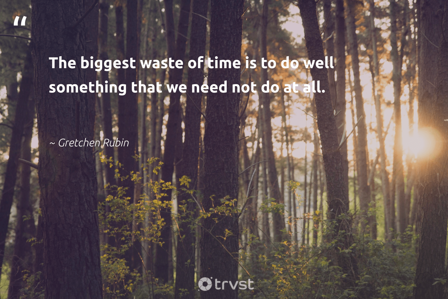 """The biggest waste of time is to do well something that we need not do at all.""  - Gretchen Rubin #trvst #quotes #waste #socialchange #gogreen #dogood #thinkgreen #betterplanet #dosomething #makeadifference #dotherightthing #weareallone"