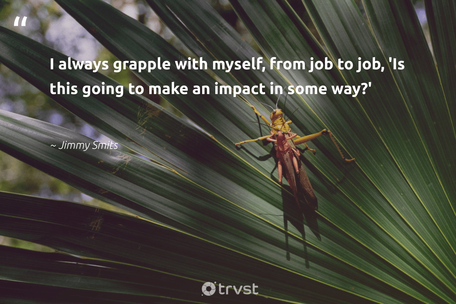 """""""I always grapple with myself, from job to job, 'Is this going to make an impact in some way?'""""  - Jimmy Smits #trvst #quotes #impact #socialchange #dotherightthing #dogood #changetheworld #betterplanet #planetearthfirst #makeadifference #ecoconscious #giveback"""