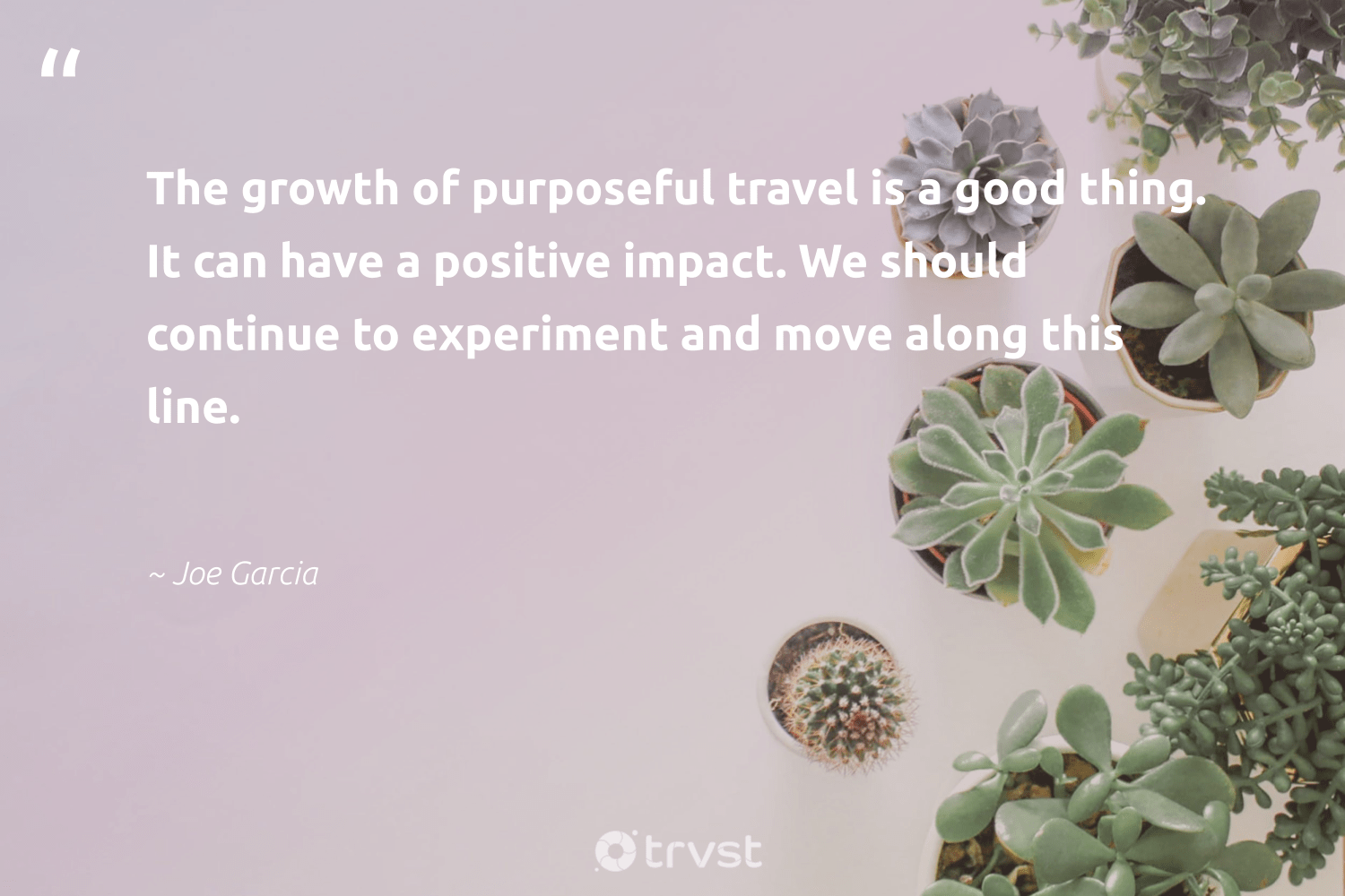 """""""The growth of purposeful travel is a good thing. It can have a positive impact. We should continue to experiment and move along this line.""""  - Joe Garcia #trvst #quotes #impact #travel #shellfish #ethicalbusiness #invertebrate #thinkgreen #underwaterphotography #giveback #flowers #dosomething"""