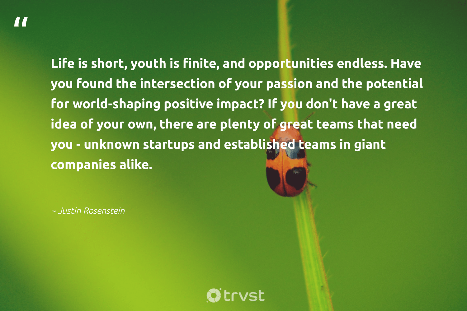 """Life is short, youth is finite, and opportunities endless. Have you found the intersection of your passion and the potential for world-shaping positive impact? If you don't have a great idea of your own, there are plenty of great teams that need you - unknown startups and established teams in giant companies alike.""  - Justin Rosenstein #trvst #quotes #impact #passion #ethicalbusiness #bethechange #weareallone #dosomething #socialchange #dogood #giveback #changetheworld"