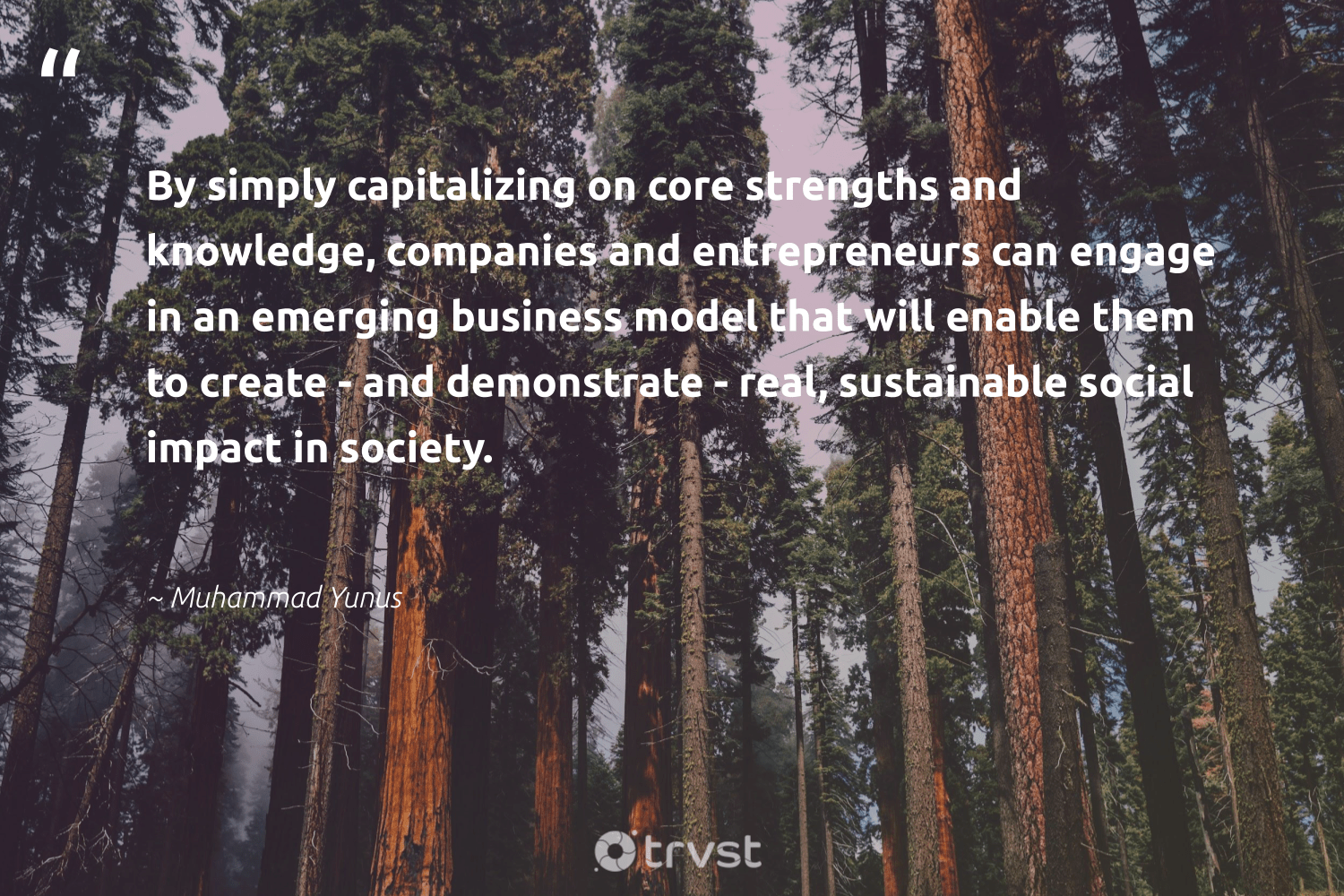 """By simply capitalizing on core strengths and knowledge, companies and entrepreneurs can engage in an emerging business model that will enable them to create - and demonstrate - real, sustainable social impact in society.""  - Muhammad Yunus #trvst #quotes #socialenterprise #impact #socialimpact #sustainable #society #socent #giveback #socialchange #ecoconscious #sociallyconscious"