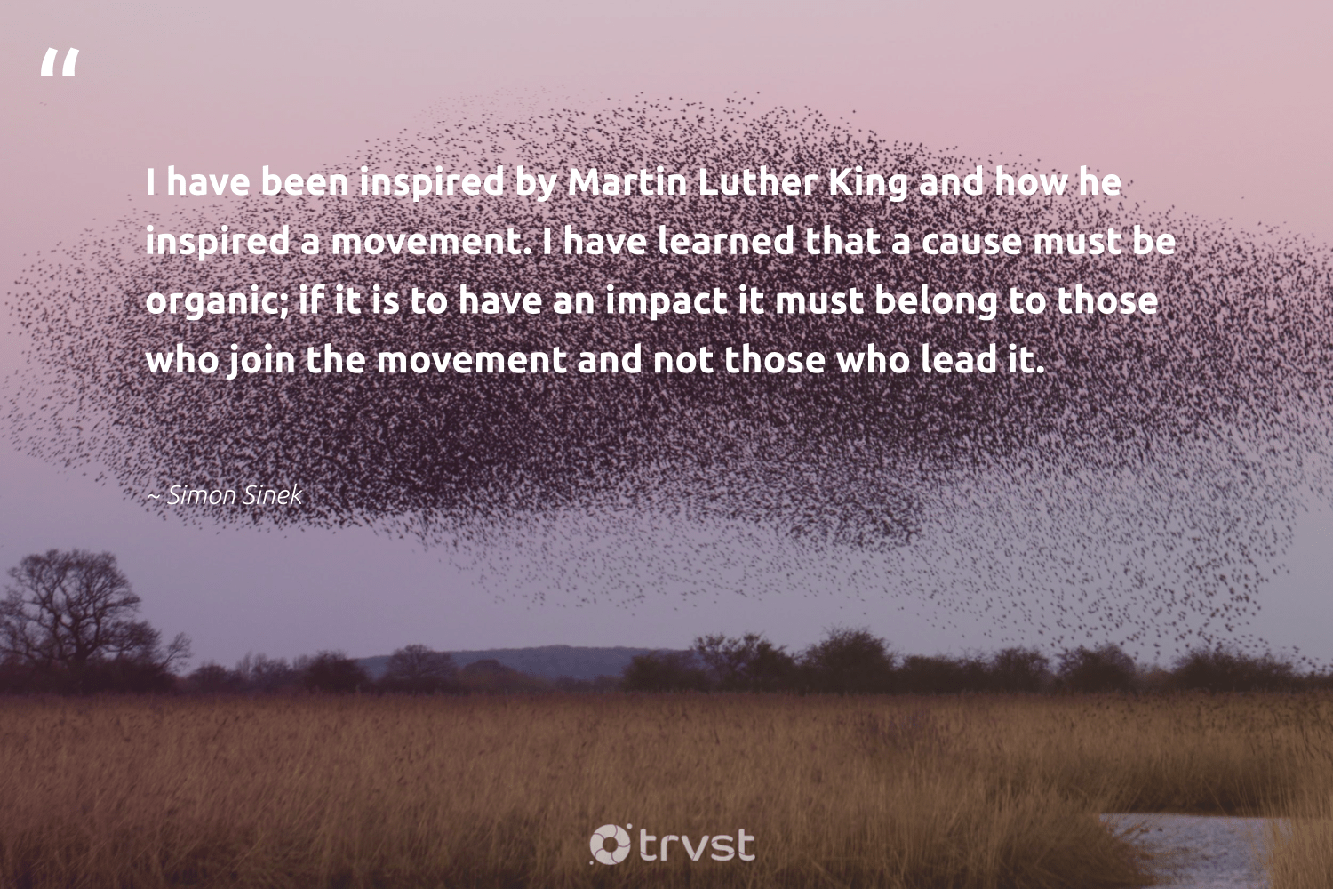 """I have been inspired by Martin Luther King and how he inspired a movement. I have learned that a cause must be organic; if it is to have an impact it must belong to those who join the movement and not those who lead it.""  - Simon Sinek #trvst #quotes #impact #cause #Charity #weareallone #bethechange #dotherightthing #fundraising #socialchange #workingtogether #takeaction"