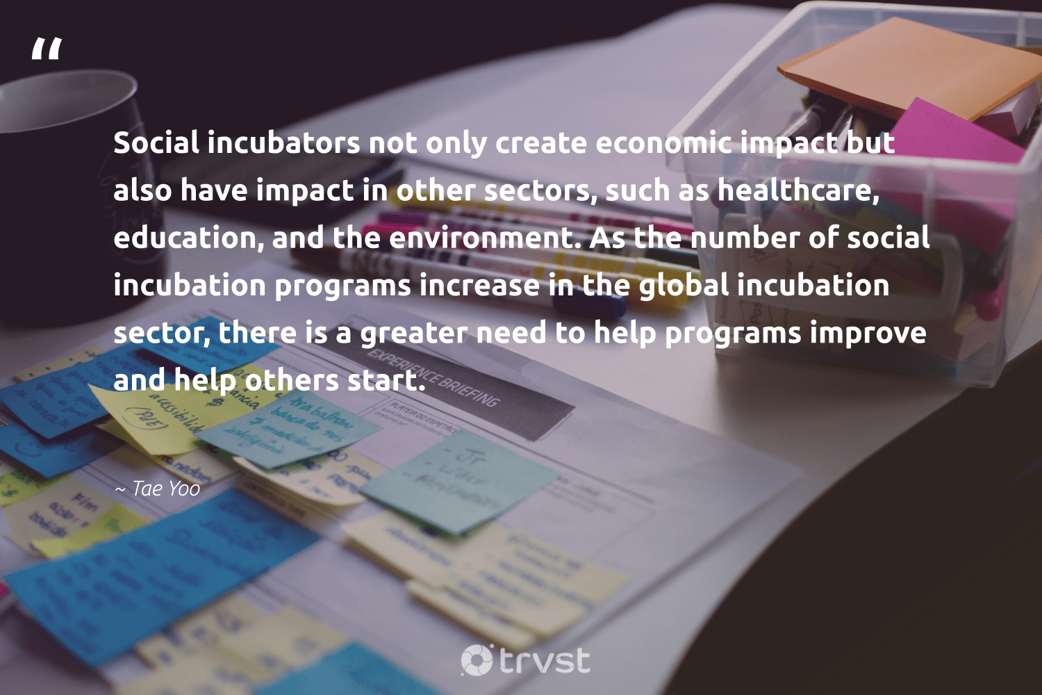 """Social incubators not only create economic impact but also have impact in other sectors, such as healthcare, education, and the environment. As the number of social incubation programs increase in the global incubation sector, there is a greater need to help programs improve and help others start.""  - Tae Yoo #trvst #quotes #impact #environment #education #conservation #makeadifference #sustainability #thinkgreen #planet #ethicalbusiness #environmentallyfriendly"