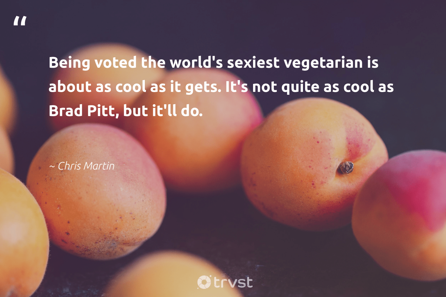 """""""Being voted the world's sexiest vegetarian is about as cool as it gets. It's not quite as cool as Brad Pitt, but it'll do.""""  - Chris Martin #trvst #quotes #vegan #vegetarian #veggie #gogreen #sustainable #ecoconscious #veganfoodshare #fashion #bethechange #dosomething"""