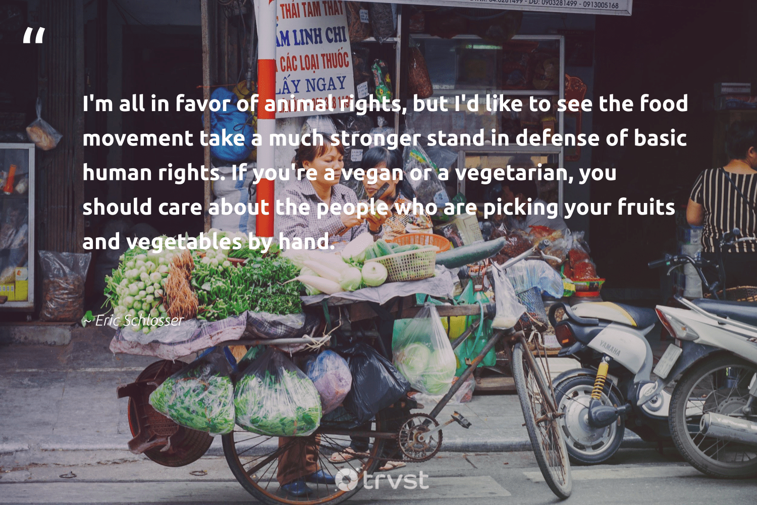"""I'm all in favor of animal rights, but I'd like to see the food movement take a much stronger stand in defense of basic human rights. If you're a vegan or a vegetarian, you should care about the people who are picking your fruits and vegetables by hand.""  - Eric Schlosser #trvst #quotes #vegan #animal #humanrights #food #vegetarian #whatveganseat #animallovers #green #greenliving #collectiveaction"